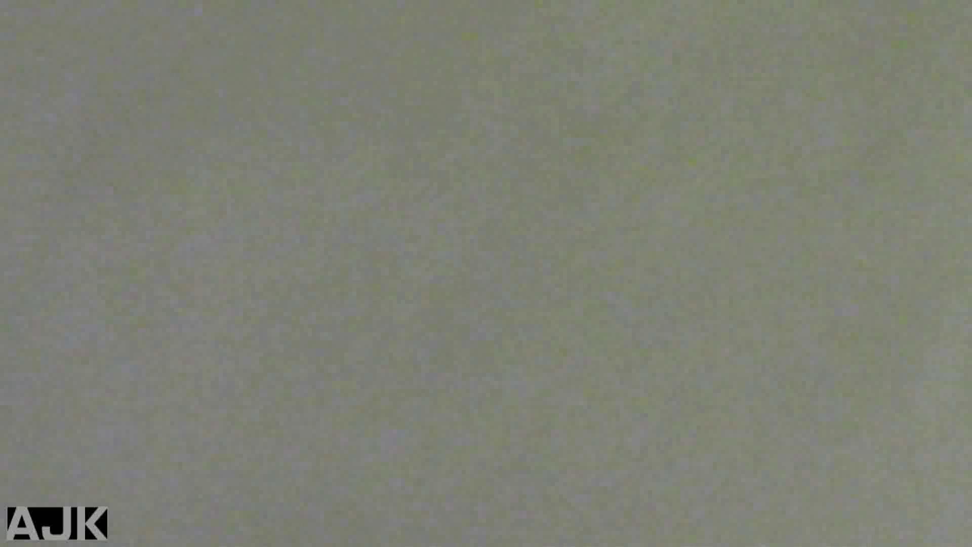 隣国上階級エリアの令嬢たちが集うデパートお手洗い Vol.01 丸見え  70画像 26