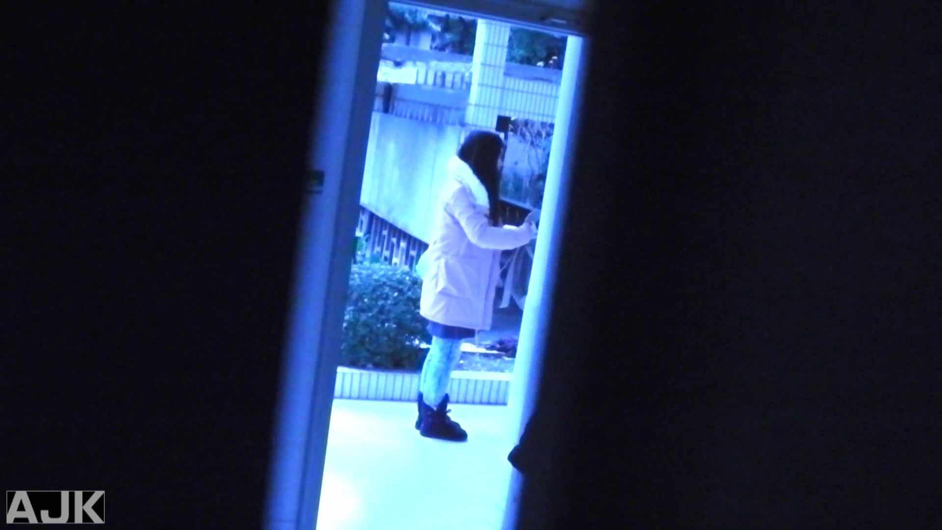 隣国上階級エリアの令嬢たちが集うデパートお手洗い Vol.07 盗撮で悶絶 セックス画像 53画像 3
