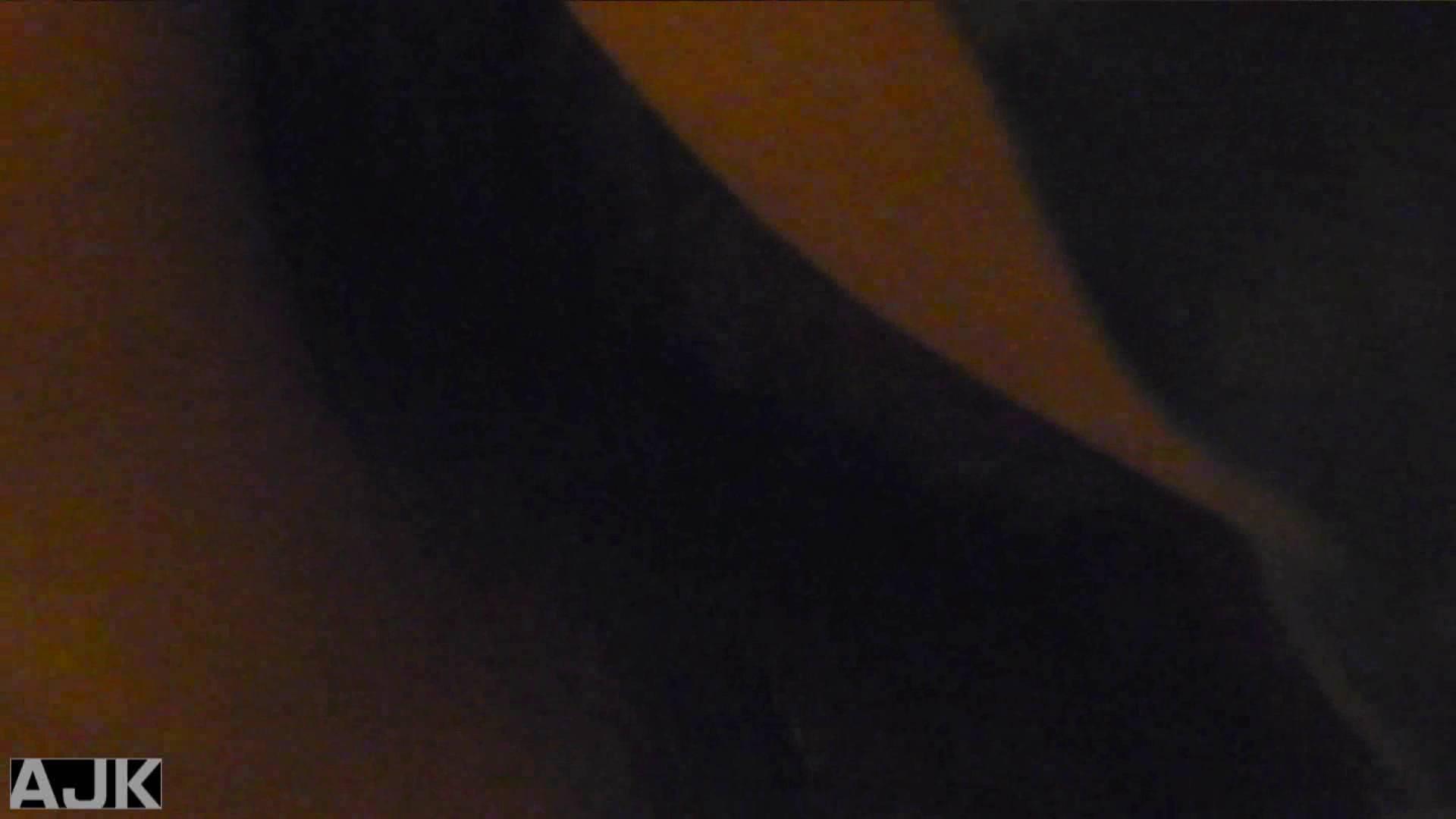 隣国上階級エリアの令嬢たちが集うデパートお手洗い Vol.26 盗撮で悶絶 AV無料動画キャプチャ 66画像 47