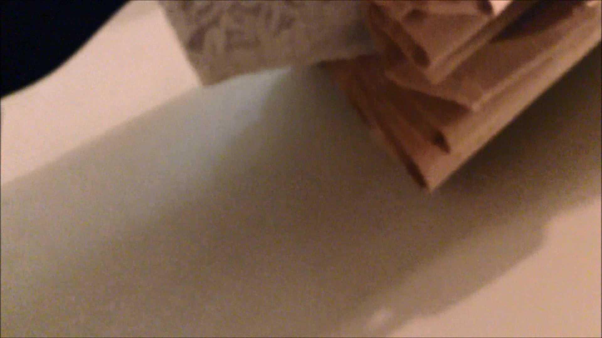 女子洗面所行列潜入記 Vol.01 潜入   洗面所  87画像 61