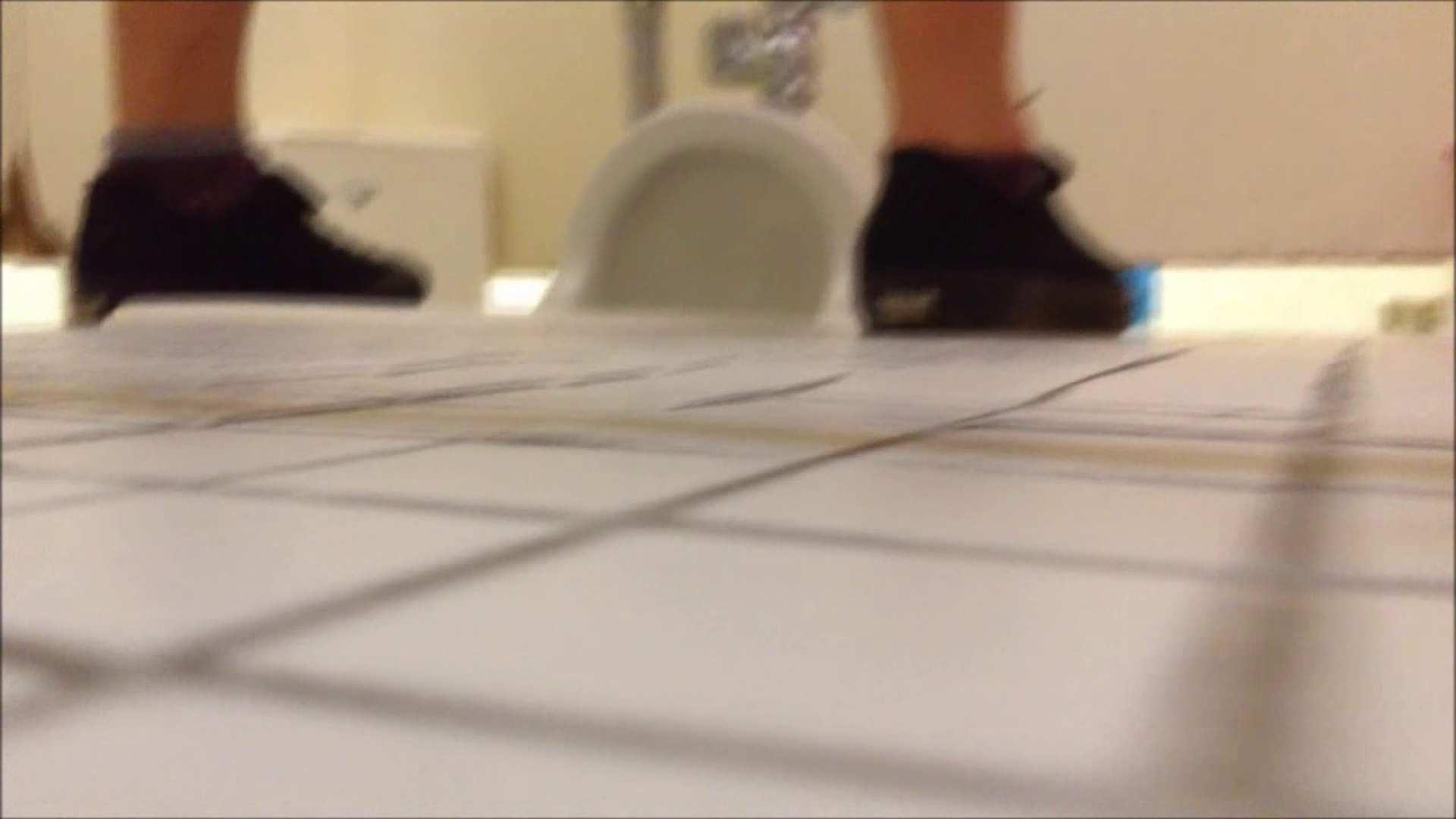 某有名大学女性洗面所 vol.01 排泄 AV無料 94画像 35