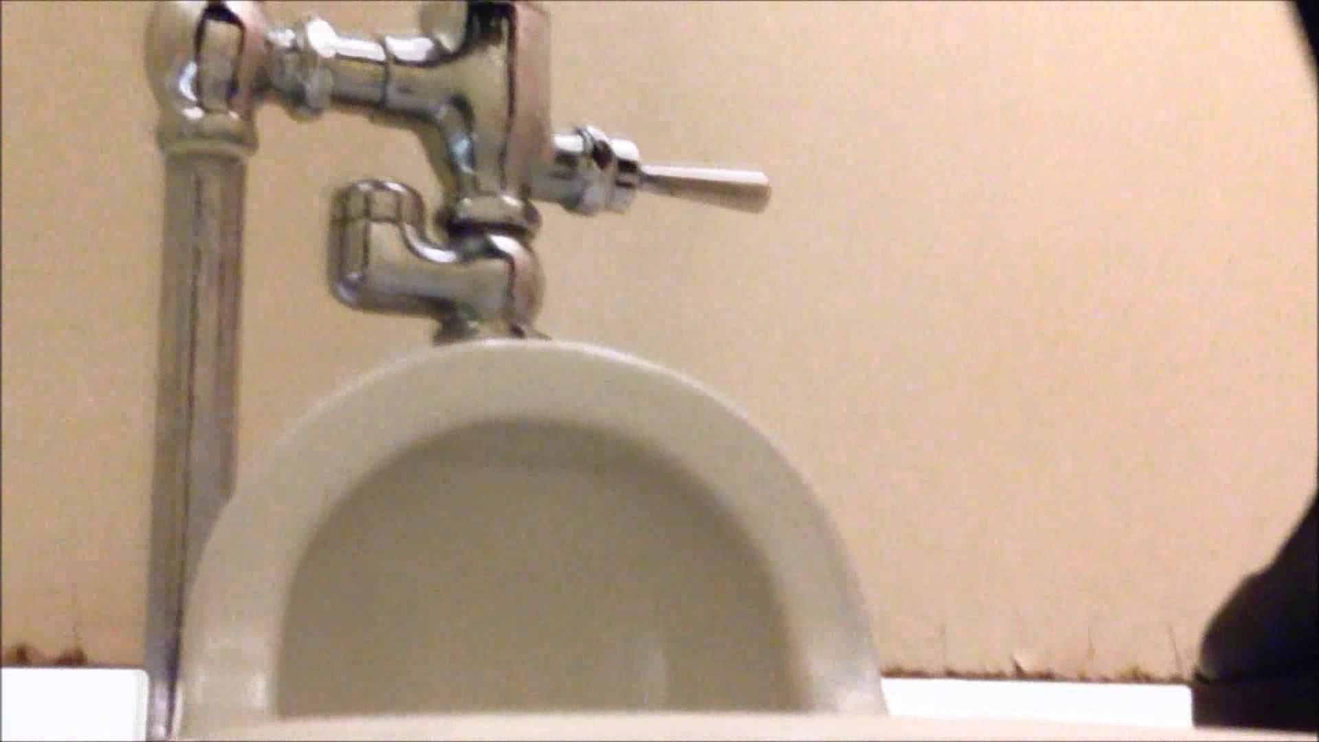 某有名大学女性洗面所 vol.14 排泄 性交動画流出 92画像 87