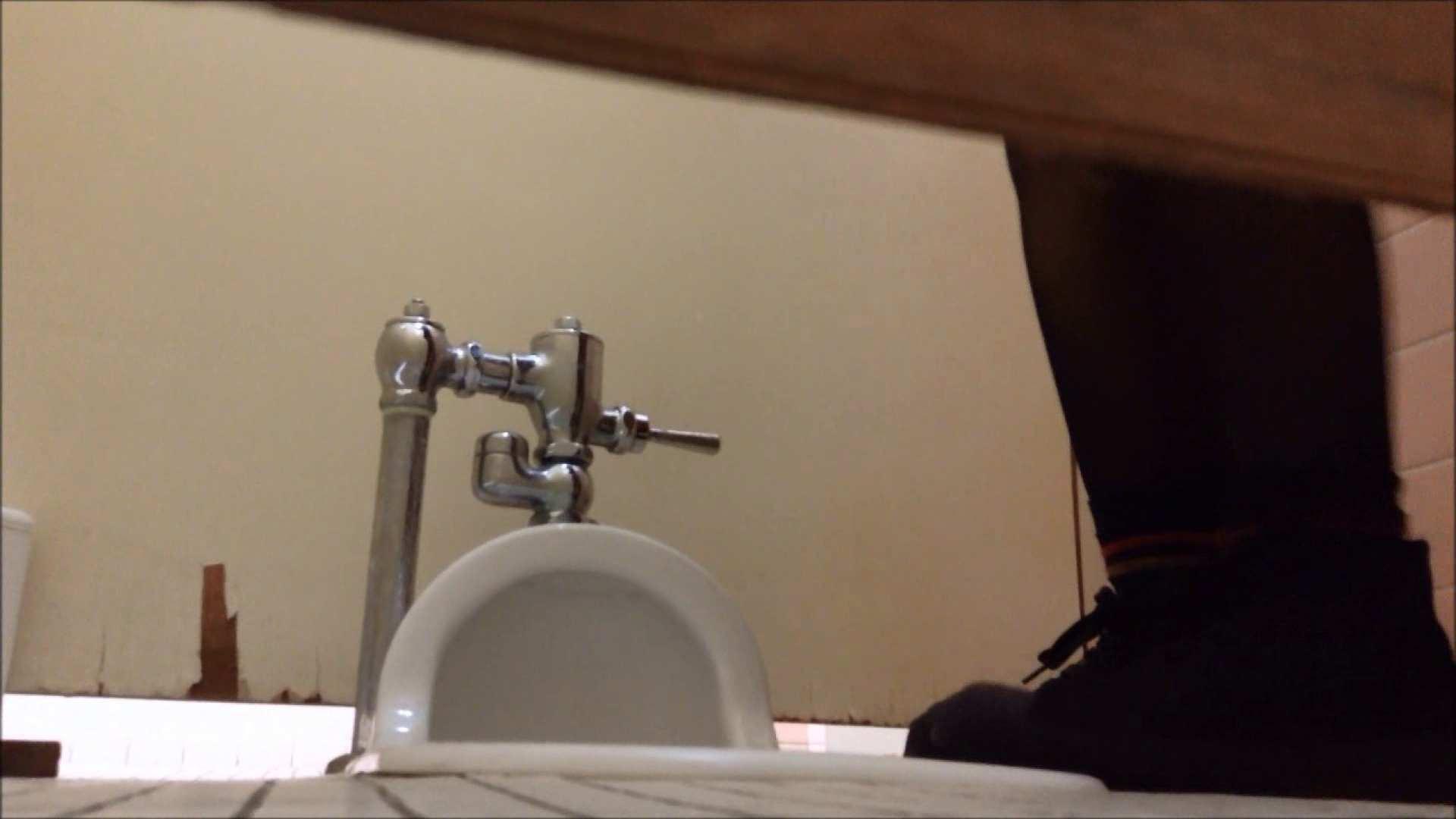某有名大学女性洗面所 vol.17 潜入 性交動画流出 85画像 53