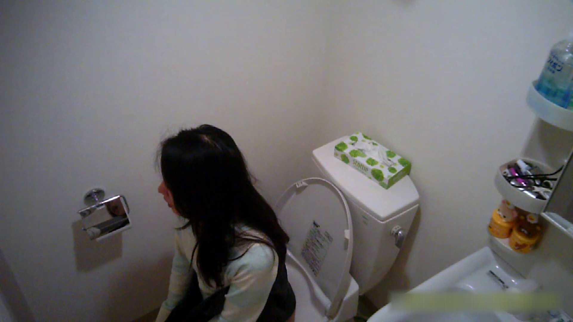 清楚な顔してかなり敏感なE子25歳(仮名)Vol.04 トイレ編 トイレのぞき 性交動画流出 62画像 27