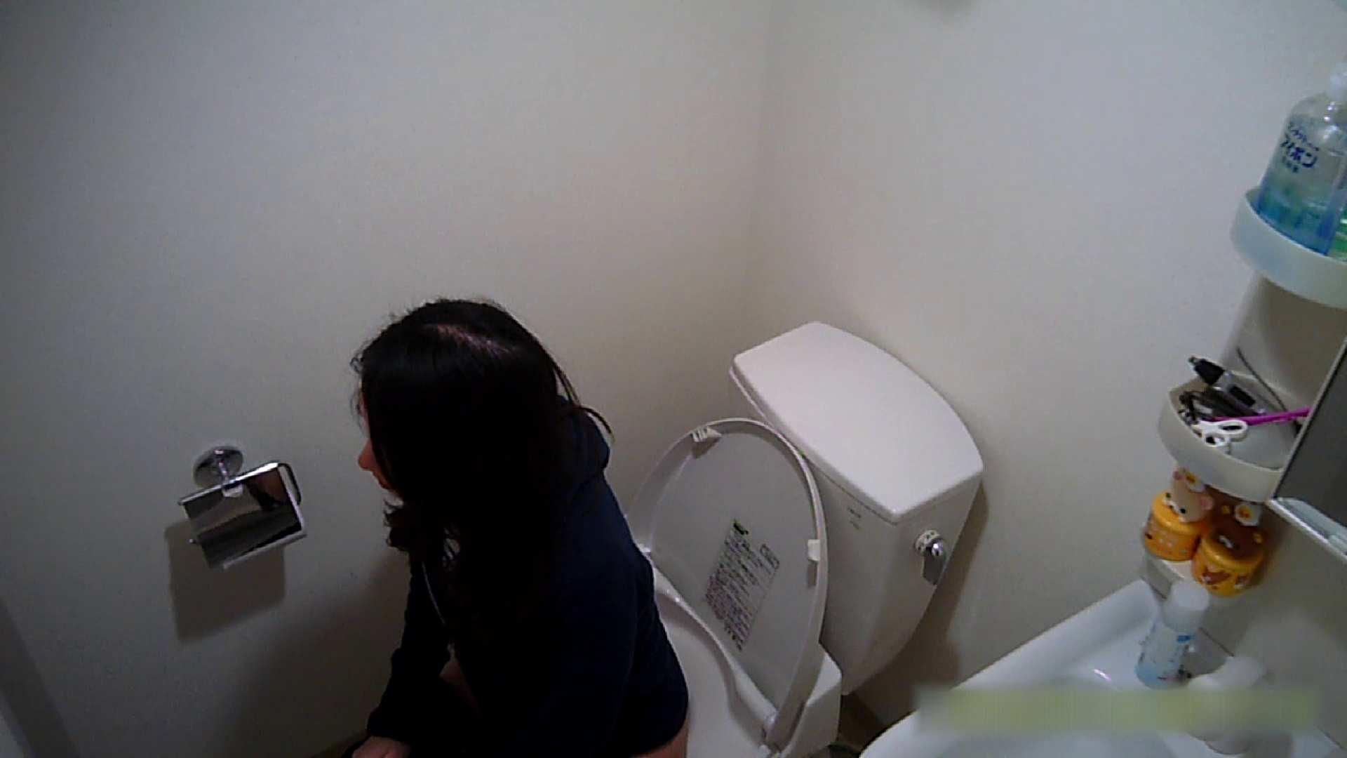 清楚な顔してかなり敏感なE子25歳(仮名)Vol.04 トイレ編 洗面所  62画像 44