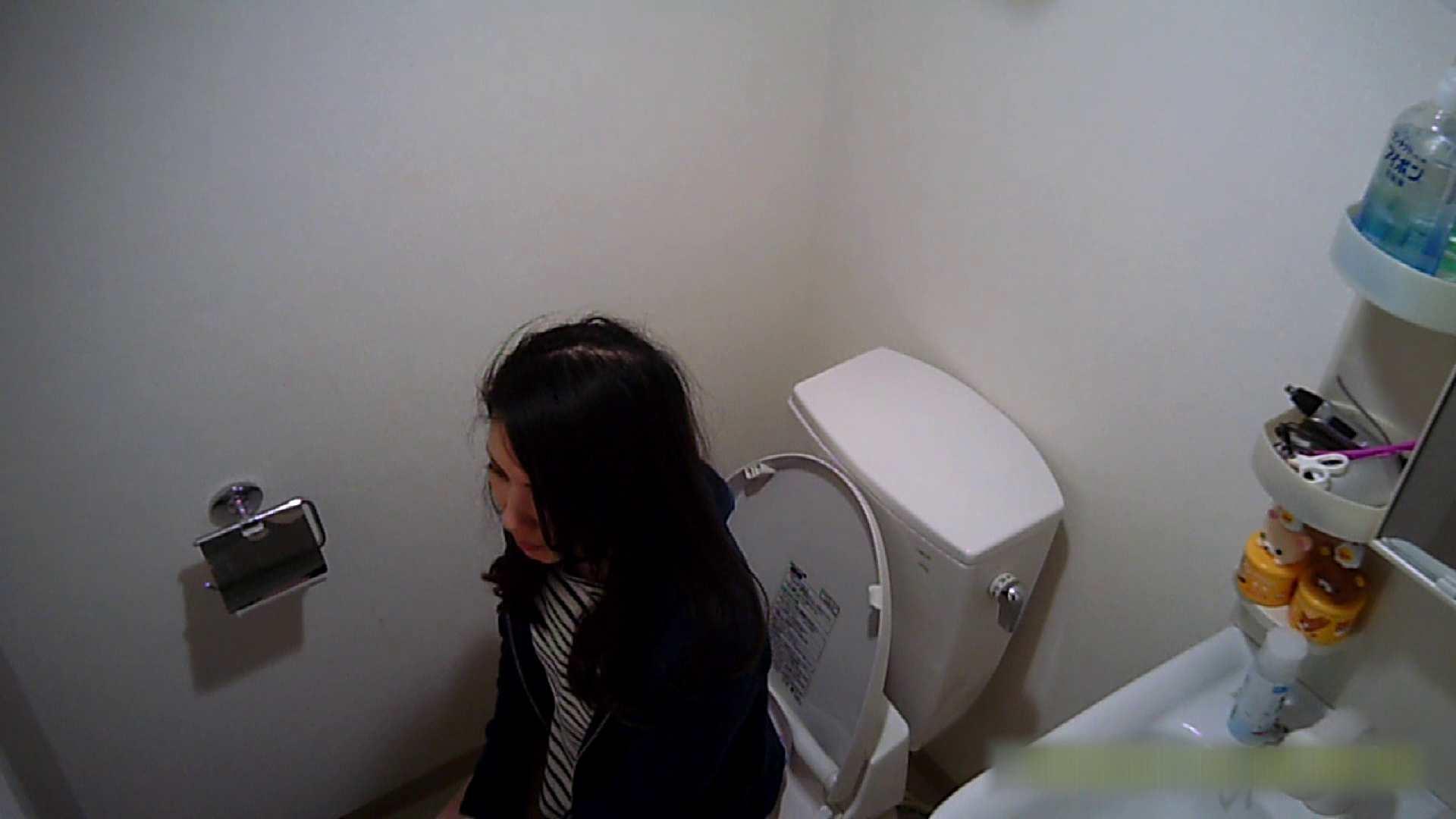 清楚な顔してかなり敏感なE子25歳(仮名)Vol.04 トイレ編 高画質 戯れ無修正画像 62画像 46