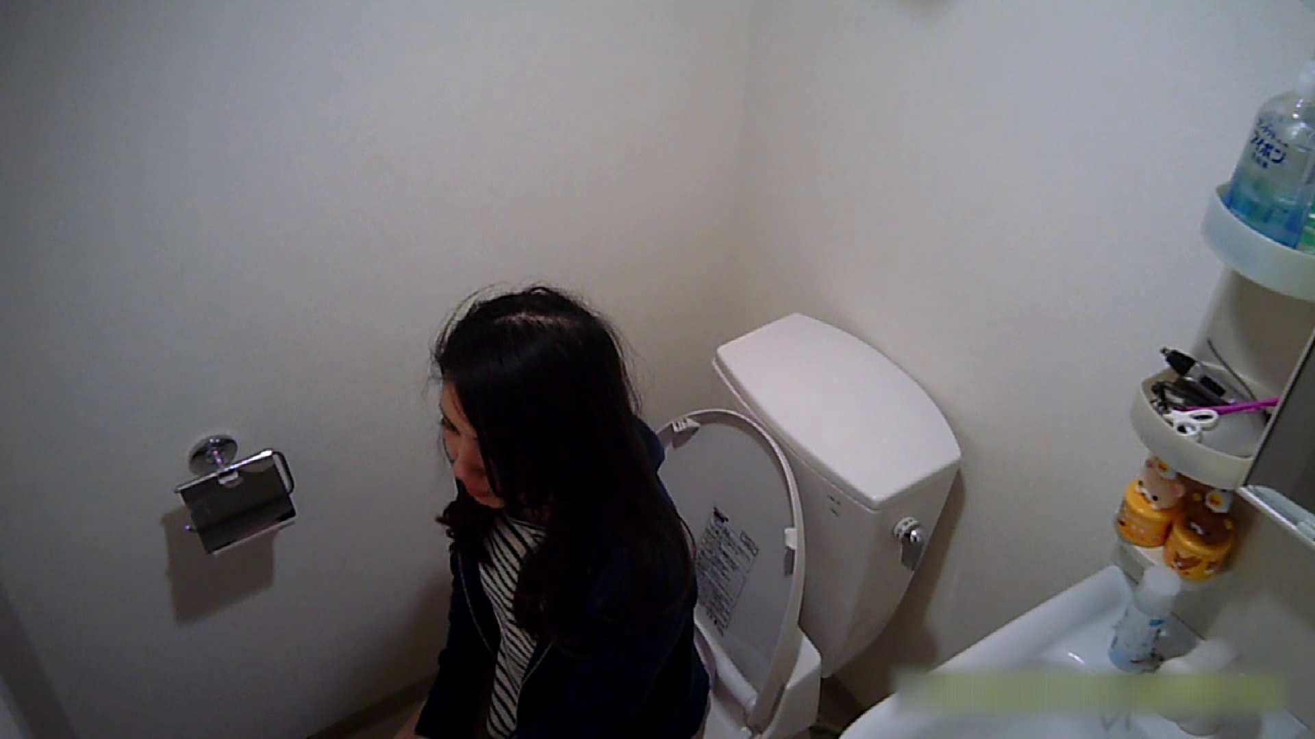 清楚な顔してかなり敏感なE子25歳(仮名)Vol.04 トイレ編 トイレのぞき 性交動画流出 62画像 47