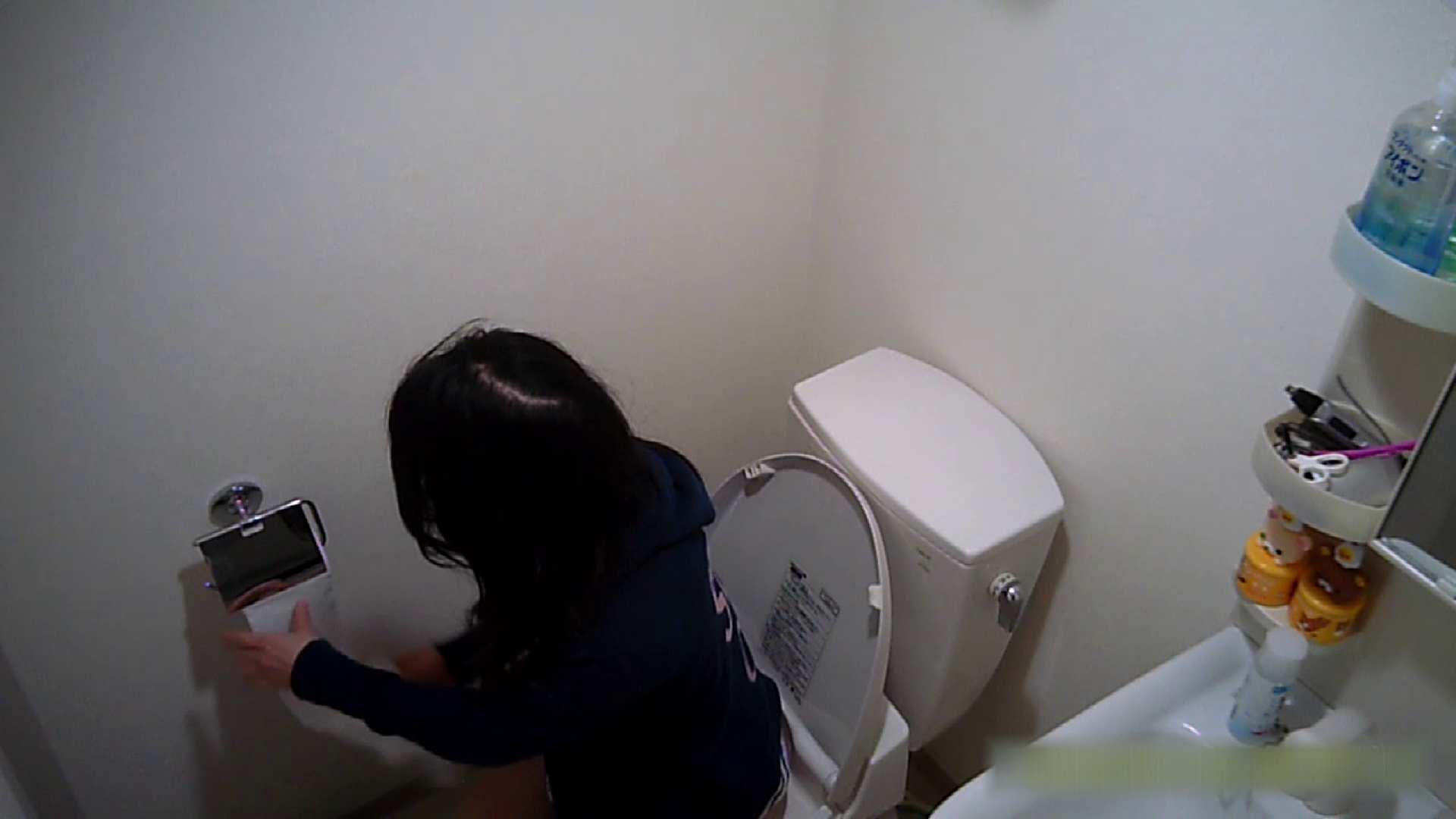 清楚な顔してかなり敏感なE子25歳(仮名)Vol.04 トイレ編 トイレのぞき 性交動画流出 62画像 51