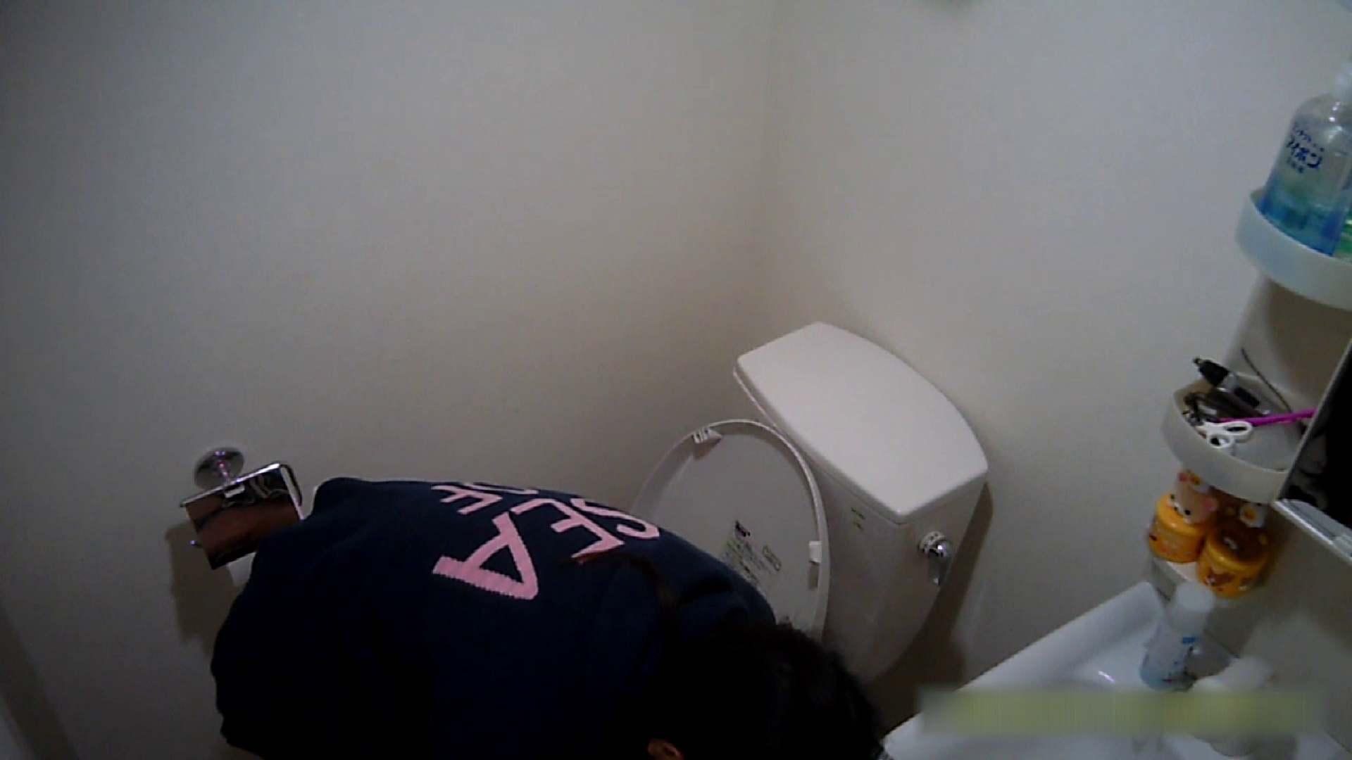 清楚な顔してかなり敏感なE子25歳(仮名)Vol.04 トイレ編 洗面所  62画像 52