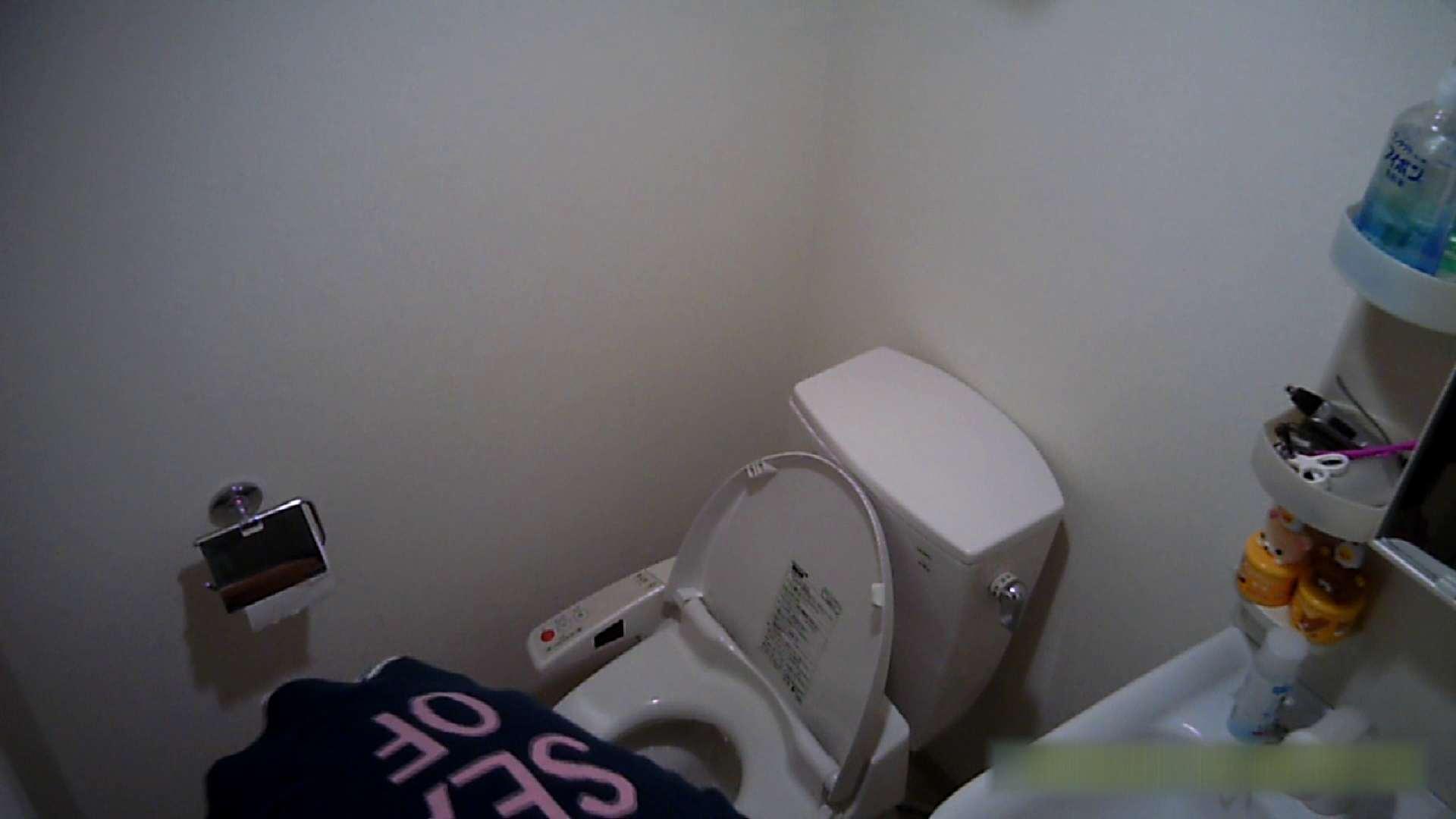 清楚な顔してかなり敏感なE子25歳(仮名)Vol.04 トイレ編 洗面所 | お姉さん攻略  62画像 53