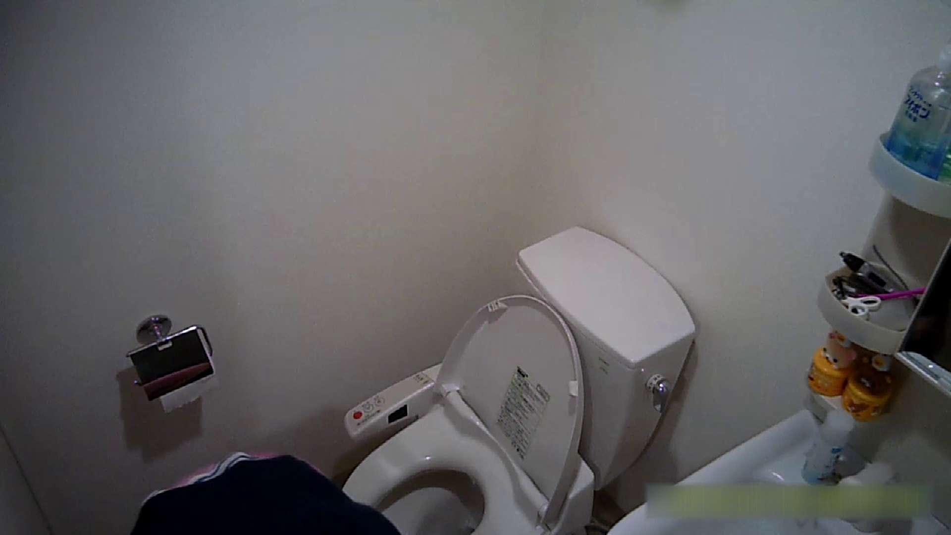 清楚な顔してかなり敏感なE子25歳(仮名)Vol.04 トイレ編 洗面所 | お姉さん攻略  62画像 57