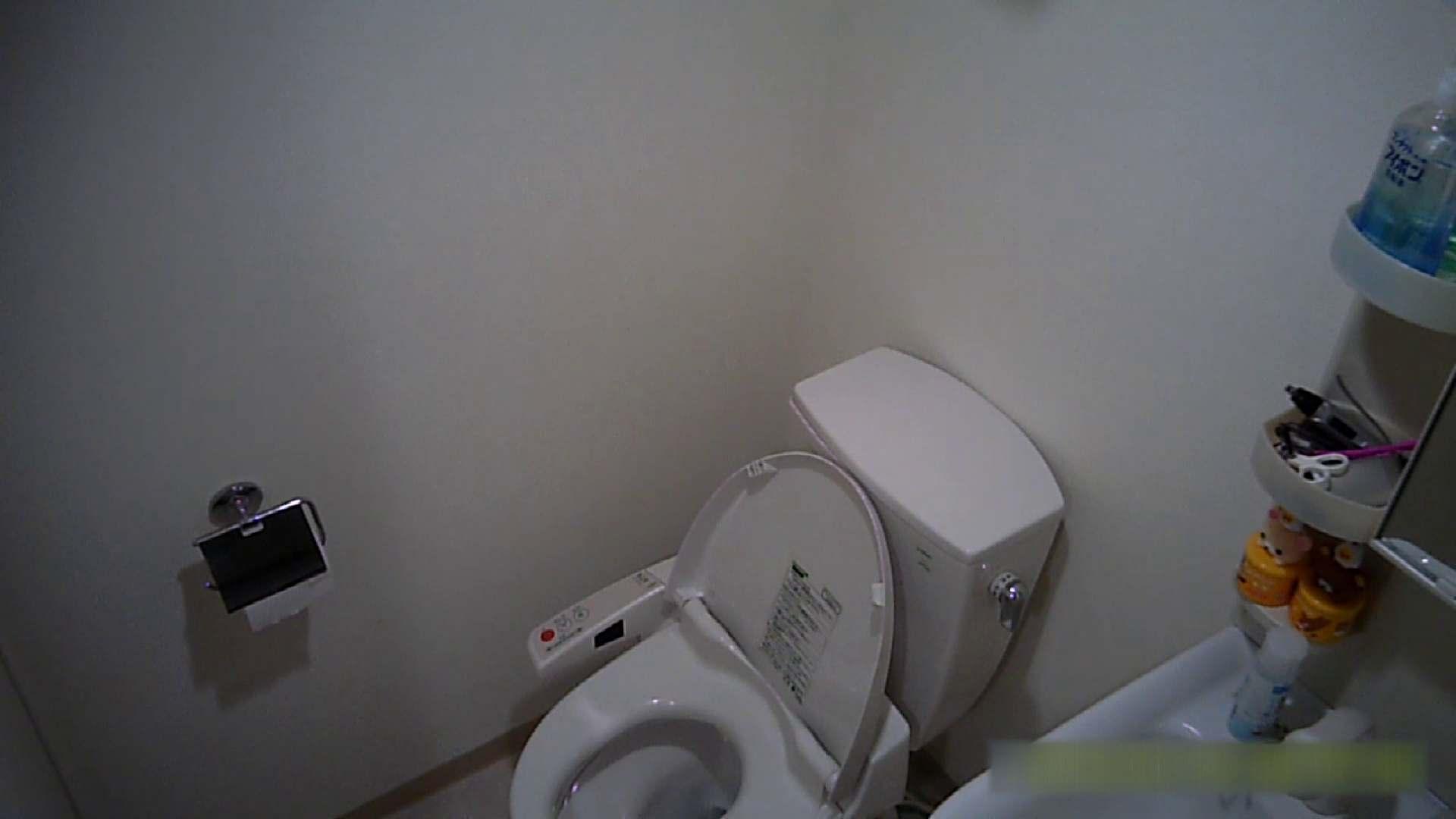 清楚な顔してかなり敏感なE子25歳(仮名)Vol.04 トイレ編 トイレのぞき 性交動画流出 62画像 59