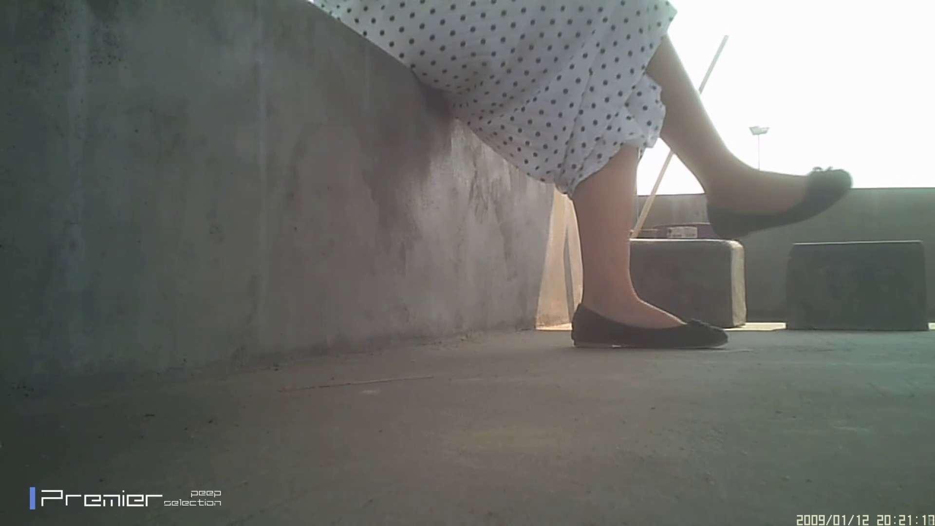 美女のパンチラ&トイレシーンを密着盗撮!! 盗撮コレクションVol.04 洗面所 おまんこ動画流出 54画像 5