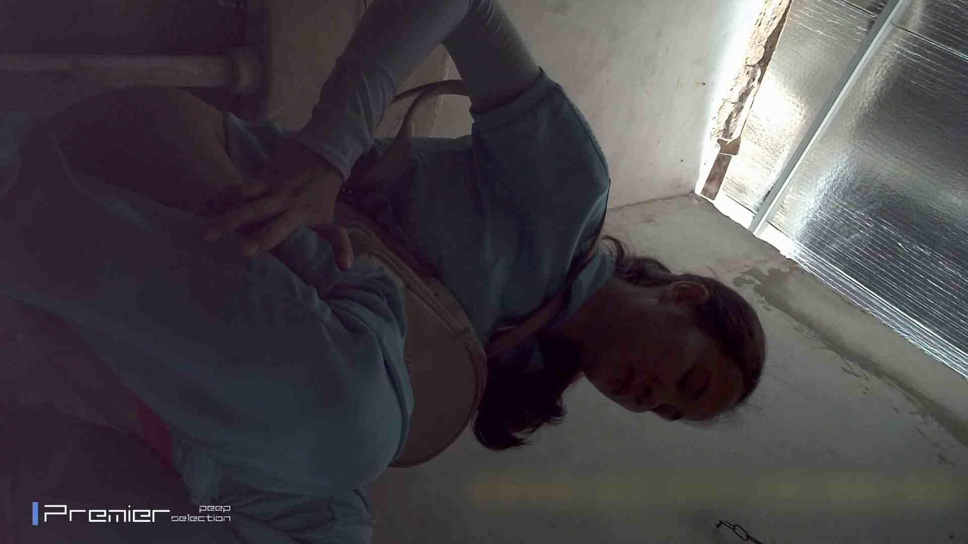 美女の痴態に密着!トイレシーンを密着盗撮!!Vol.13 潜入 セックス画像 100画像 9