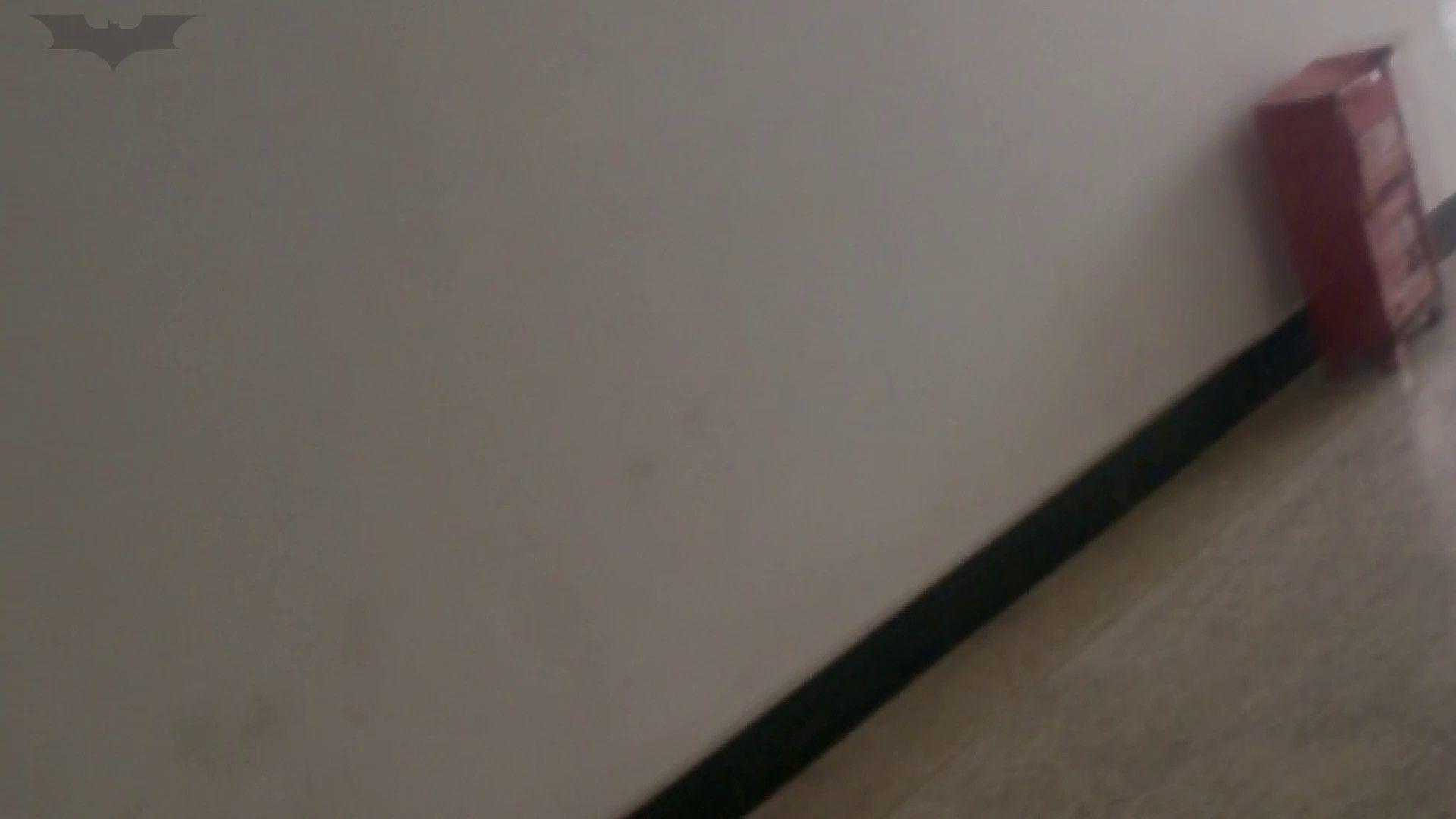 JD盗撮 美女の洗面所の秘密 Vol.02 むっちり すけべAV動画紹介 60画像 7