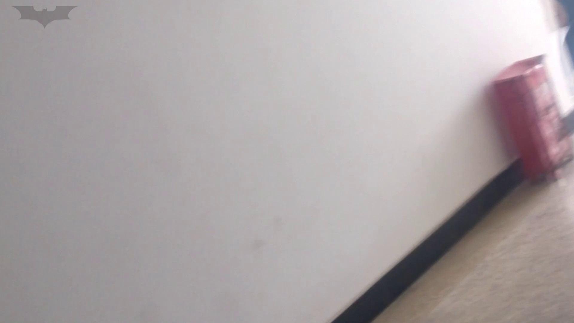 JD盗撮 美女の洗面所の秘密 Vol.02 隠れた名作 セックス画像 60画像 9