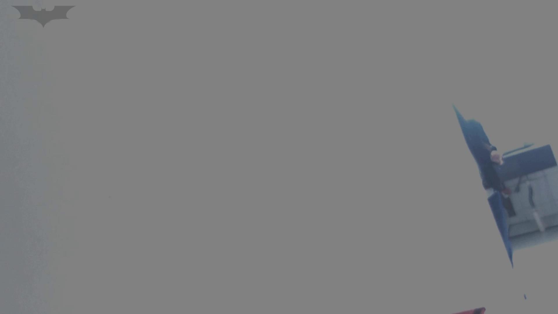 JD盗撮 美女の洗面所の秘密 Vol.05 盛合せ オマンコ無修正動画無料 59画像 2