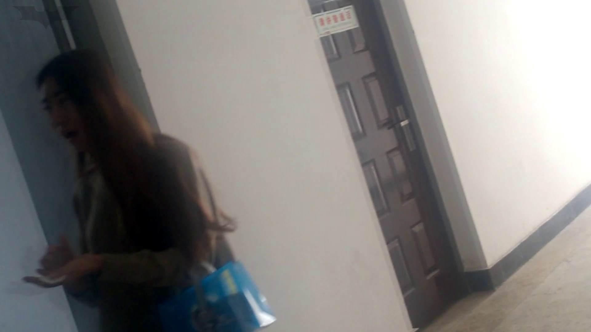 オマンコ丸見え:JD盗撮 美女の洗面所の秘密 Vol.06:怪盗ジョーカー