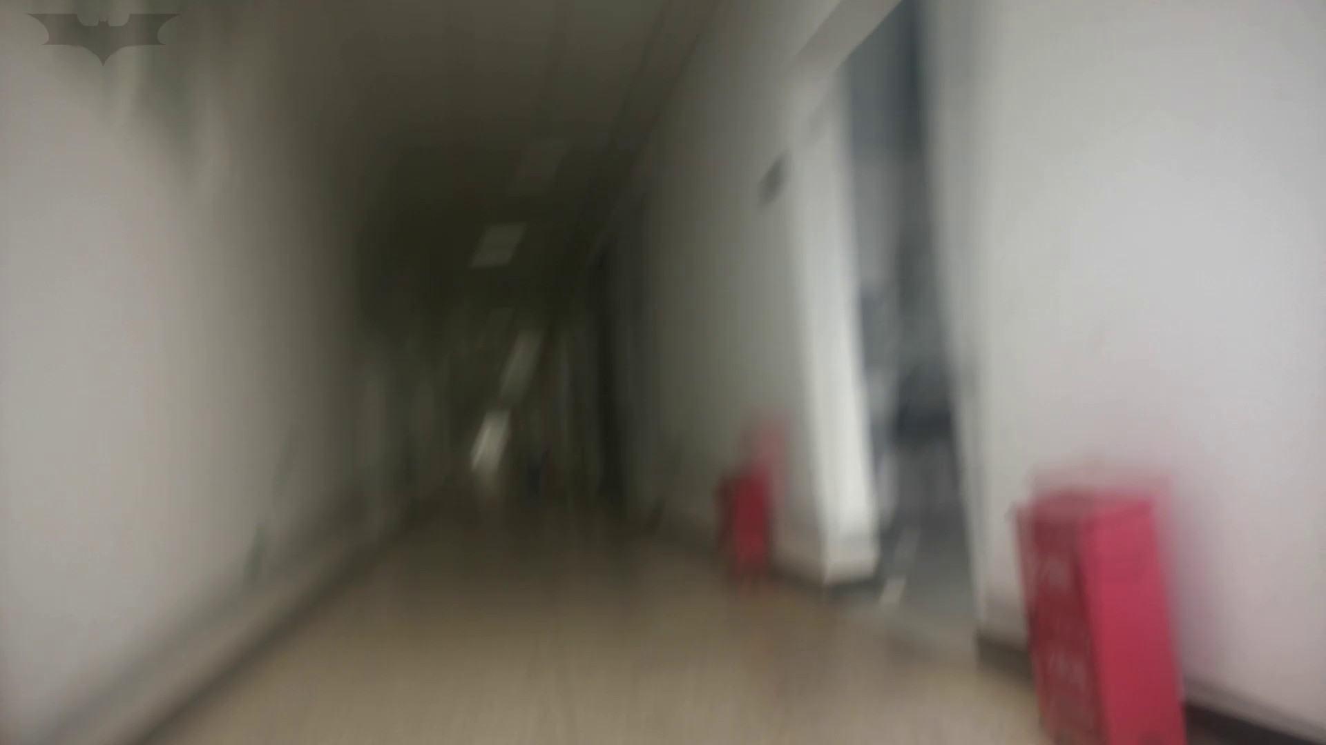 JD盗撮 美女の洗面所の秘密 Vol.10 盛合せ ぱこり動画紹介 78画像 19