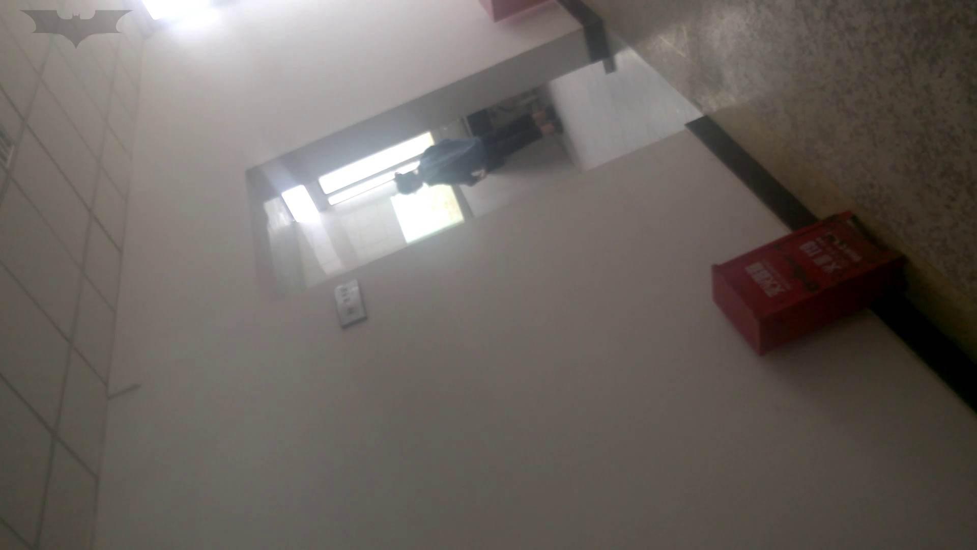 JD盗撮 美女の洗面所の秘密 Vol.10 洗面所 濡れ場動画紹介 78画像 29