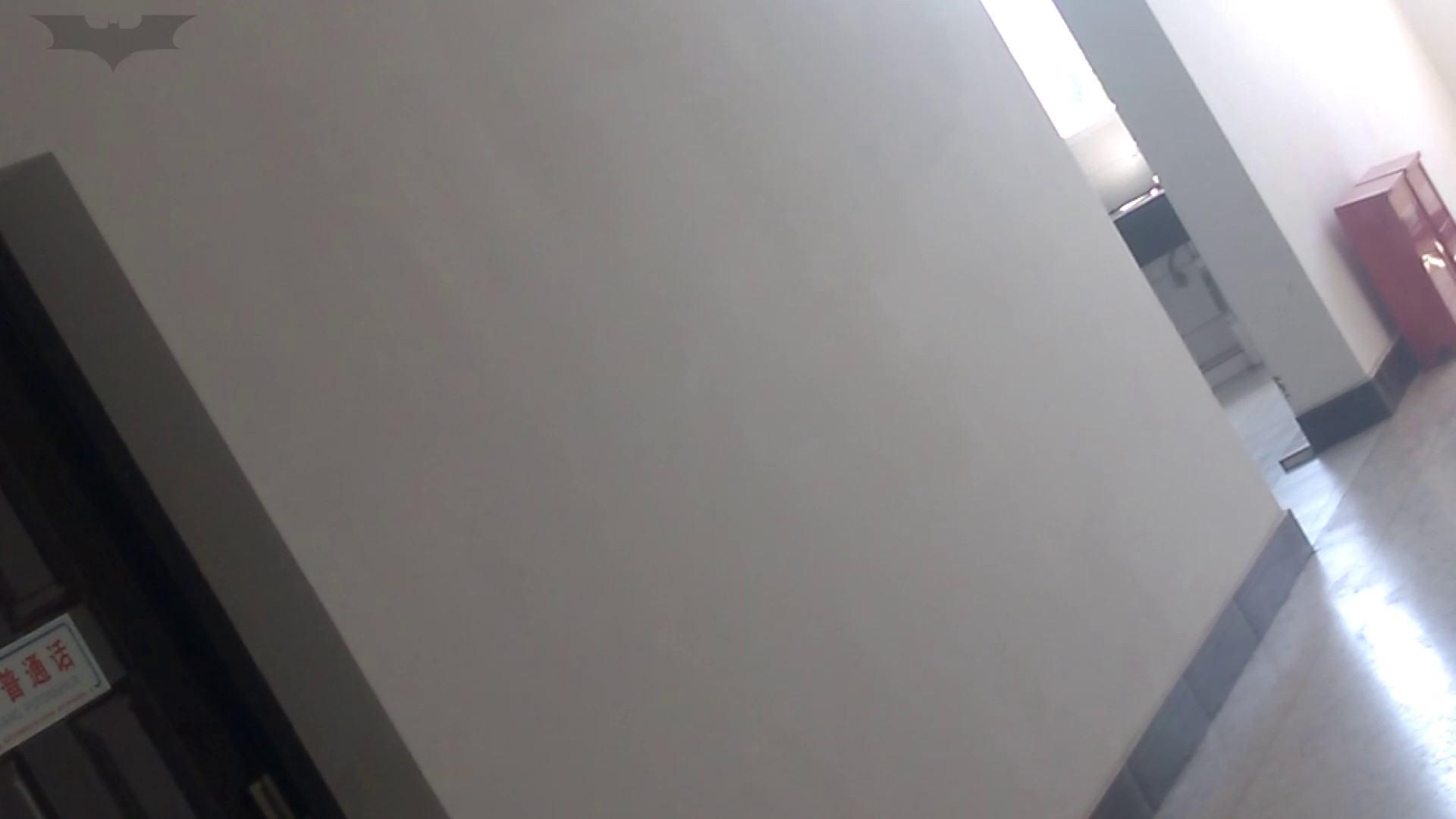 JD盗撮 美女の洗面所の秘密 Vol.10 トイレのぞき ワレメ無修正動画無料 78画像 63