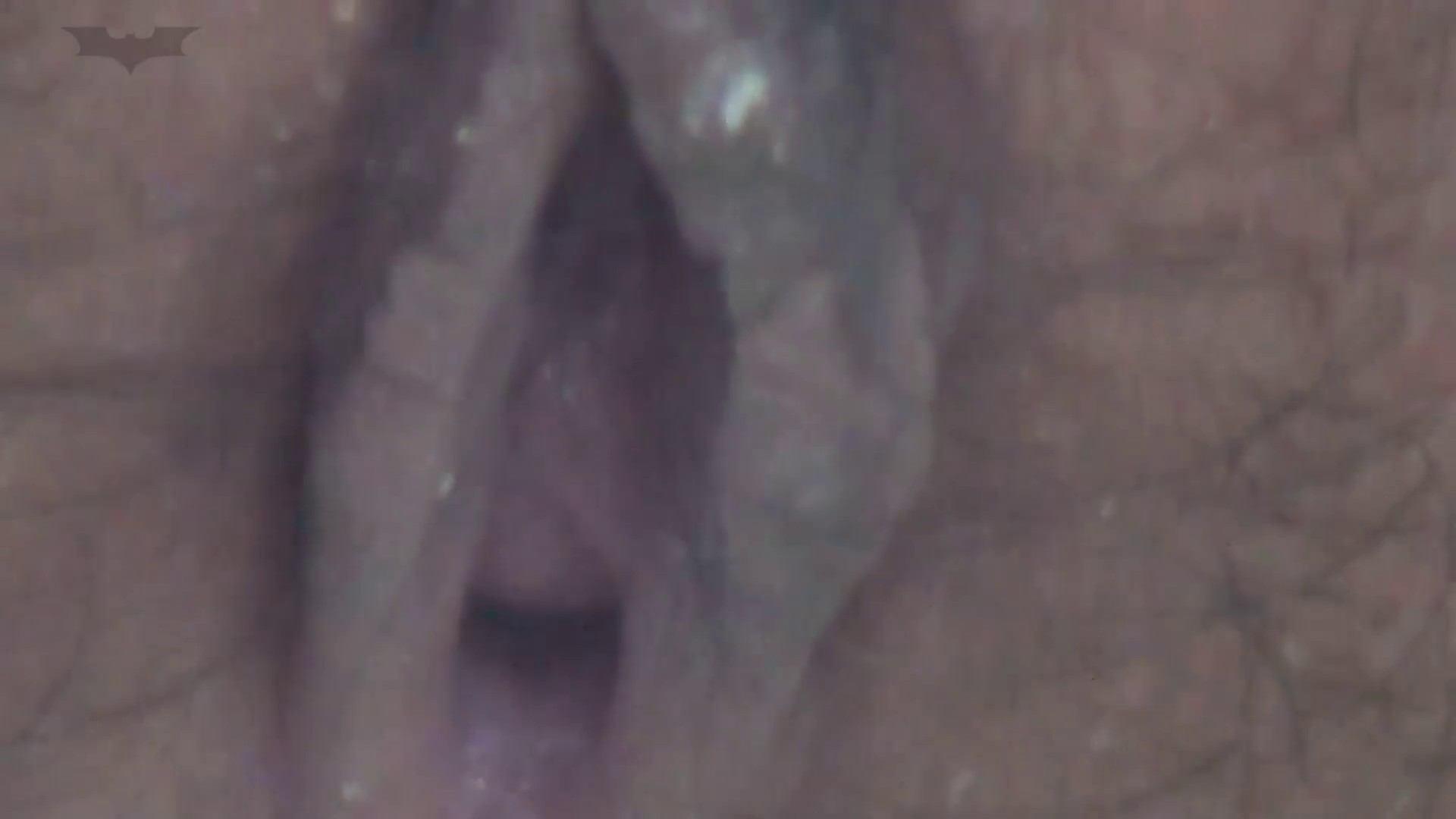 JD盗撮 美女の洗面所の秘密 Vol.13 ギャル攻め AV無料 75画像 72
