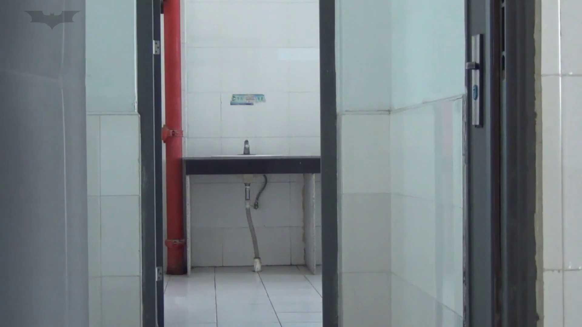 JD盗撮 美女の洗面所の秘密 Vol.15 盛合せ アダルト動画キャプチャ 72画像 13