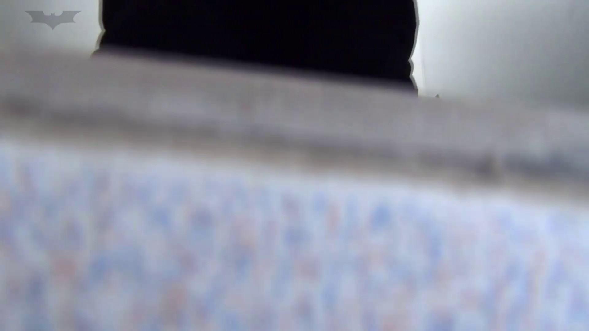 JD盗撮 美女の洗面所の秘密 Vol.15 美肌 オマンコ動画キャプチャ 72画像 64