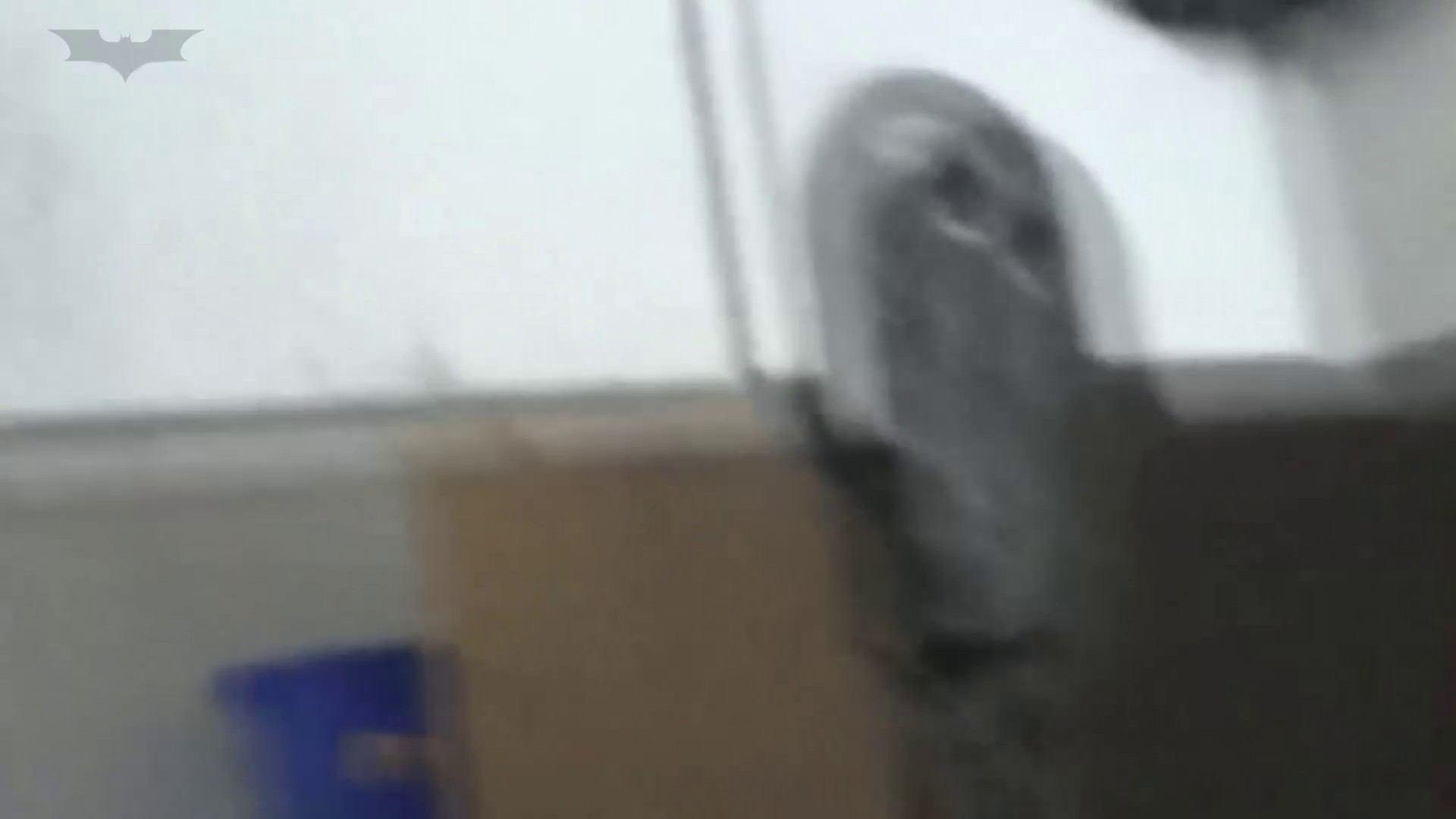 JD盗撮 美女の洗面所の秘密 Vol.29 丸見え おめこ無修正動画無料 87画像 75