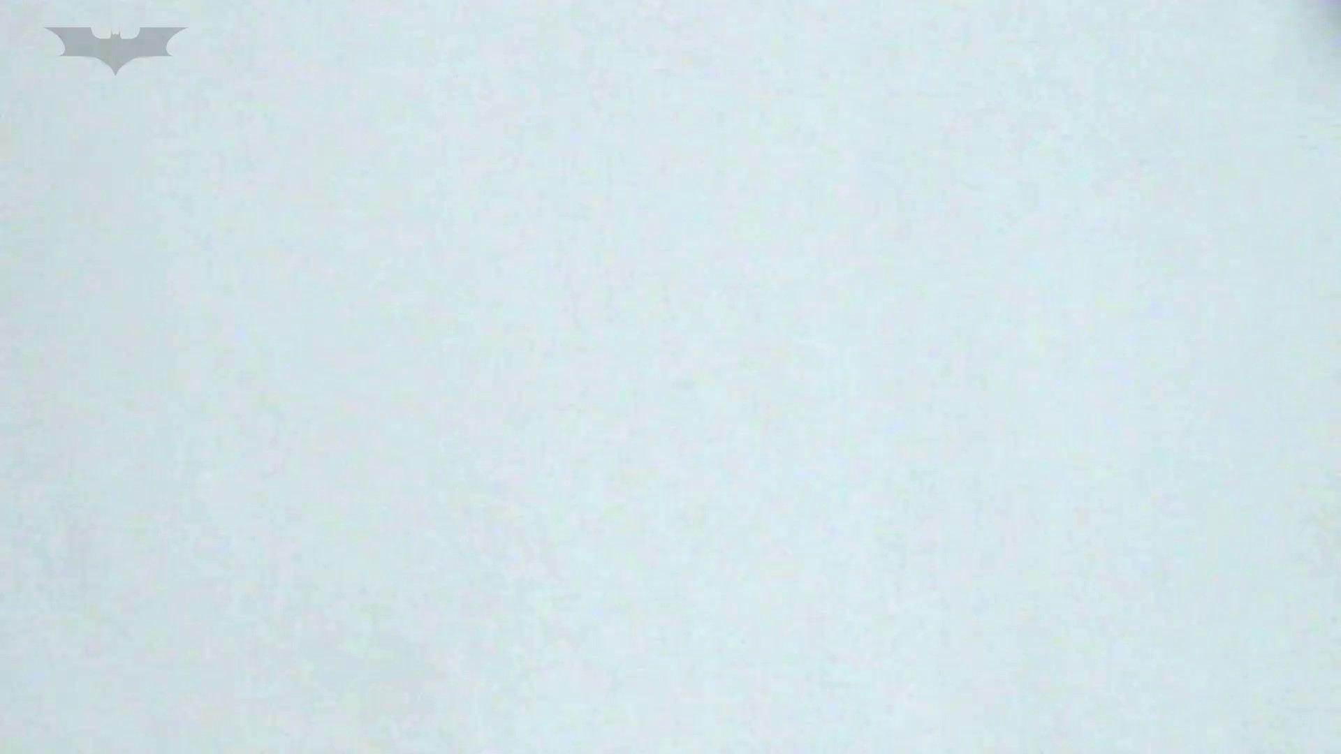 JD盗撮 美女の洗面所の秘密 Vol.33 美女 | 洗面所  68画像 21