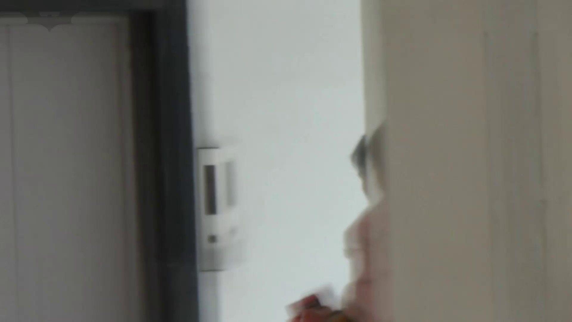JD盗撮 美女の洗面所の秘密 Vol.33 美女 | 洗面所  68画像 29