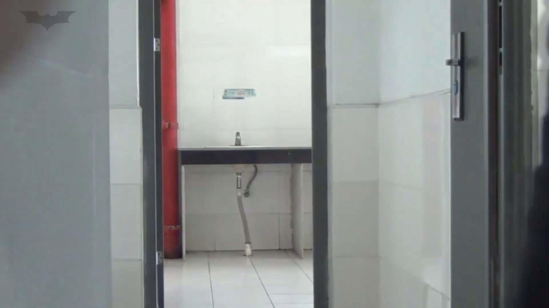 JD盗撮 美女の洗面所の秘密 Vol.33 トイレのぞき AV動画キャプチャ 68画像 43