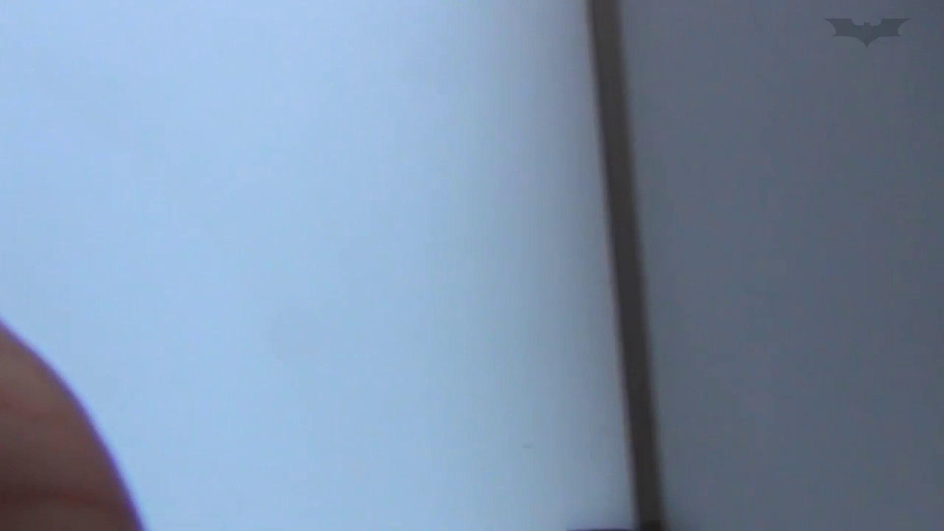 JD盗撮 美女の洗面所の秘密 Vol.48 細身女性 AV動画キャプチャ 57画像 13