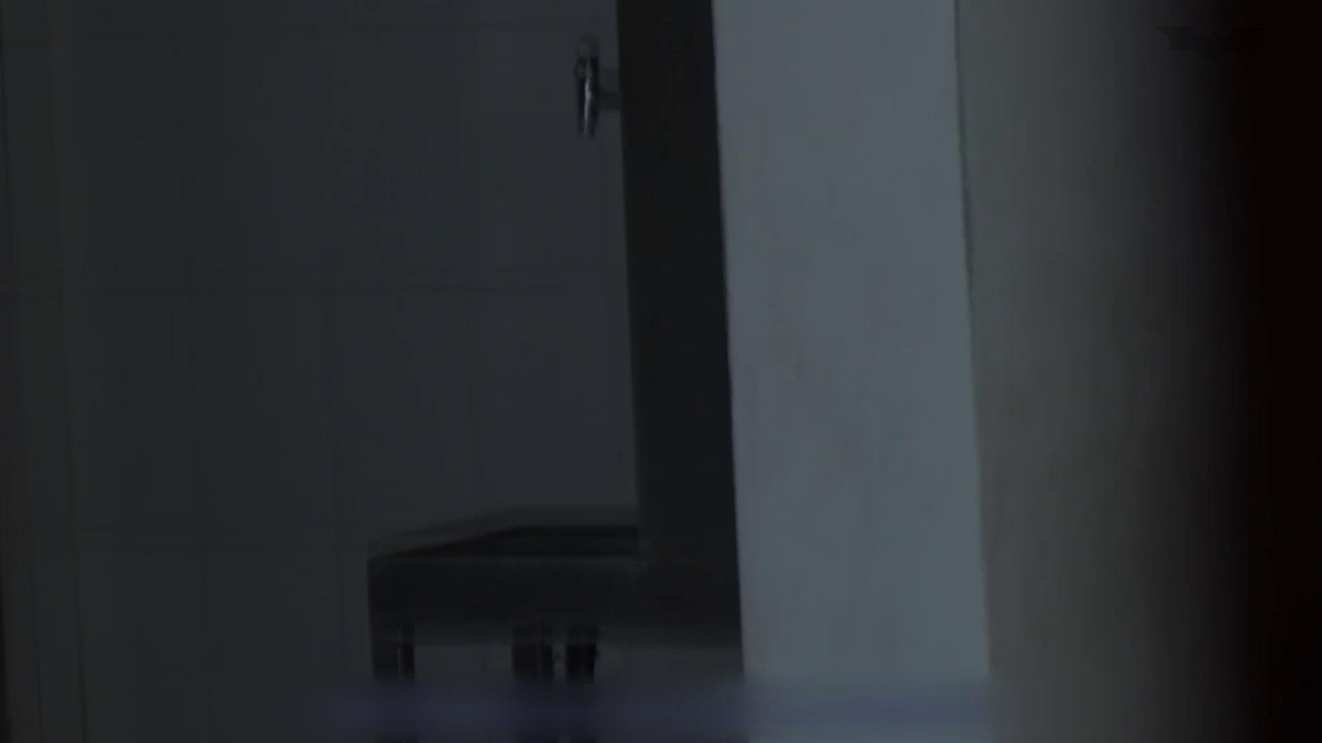 JD盗撮 美女の洗面所の秘密 Vol.52 細身女性 ワレメ無修正動画無料 48画像 15