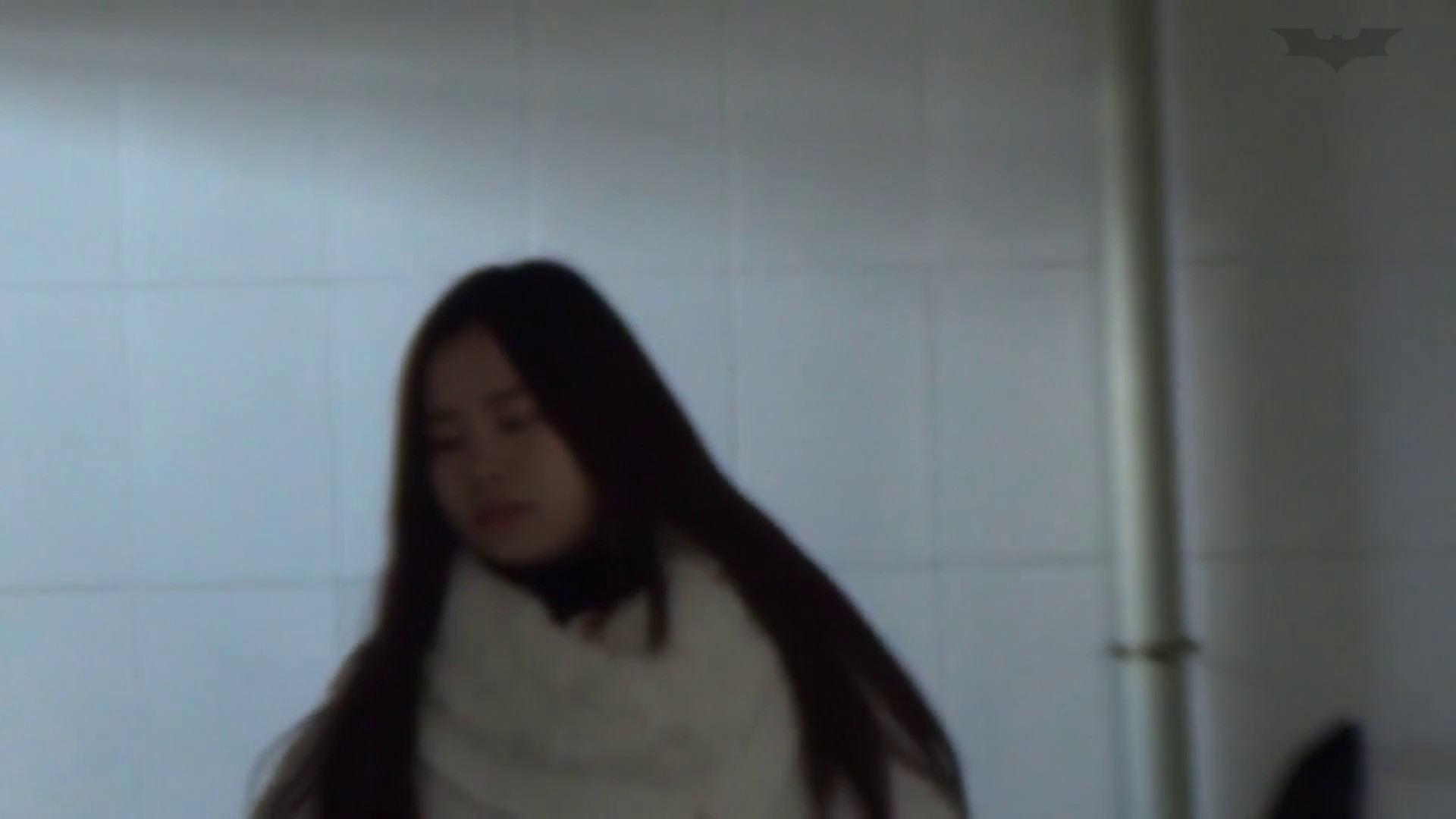JD盗撮 美女の洗面所の秘密 Vol.63 美肌 AV無料動画キャプチャ 87画像 47