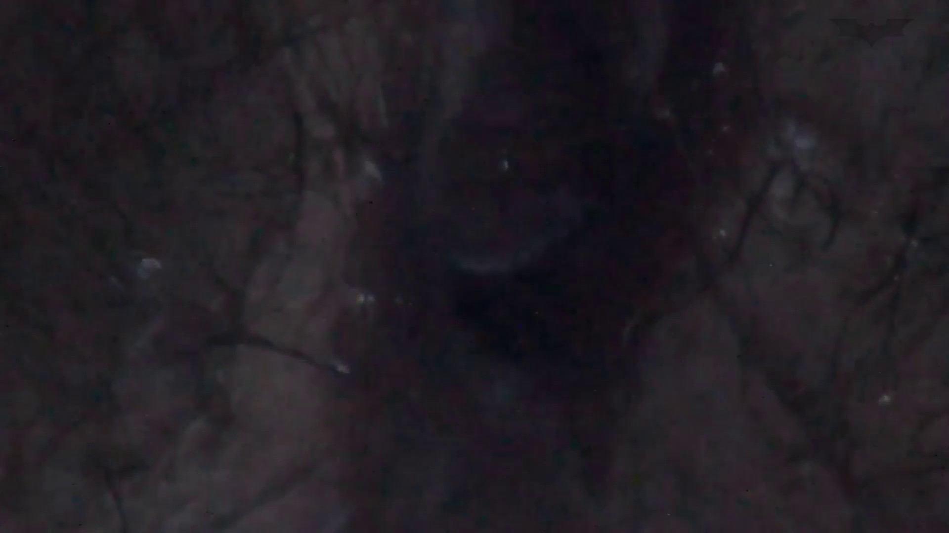 JD盗撮 美女の洗面所の秘密 Vol.64 細身女性 ワレメ動画紹介 81画像 39