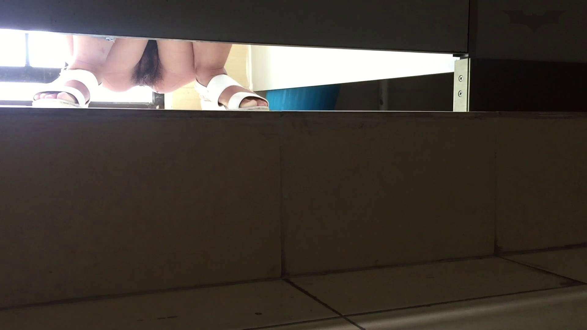 JD盗撮 美女の洗面所の秘密 Vol.66 細身女性 | 美女  82画像 67