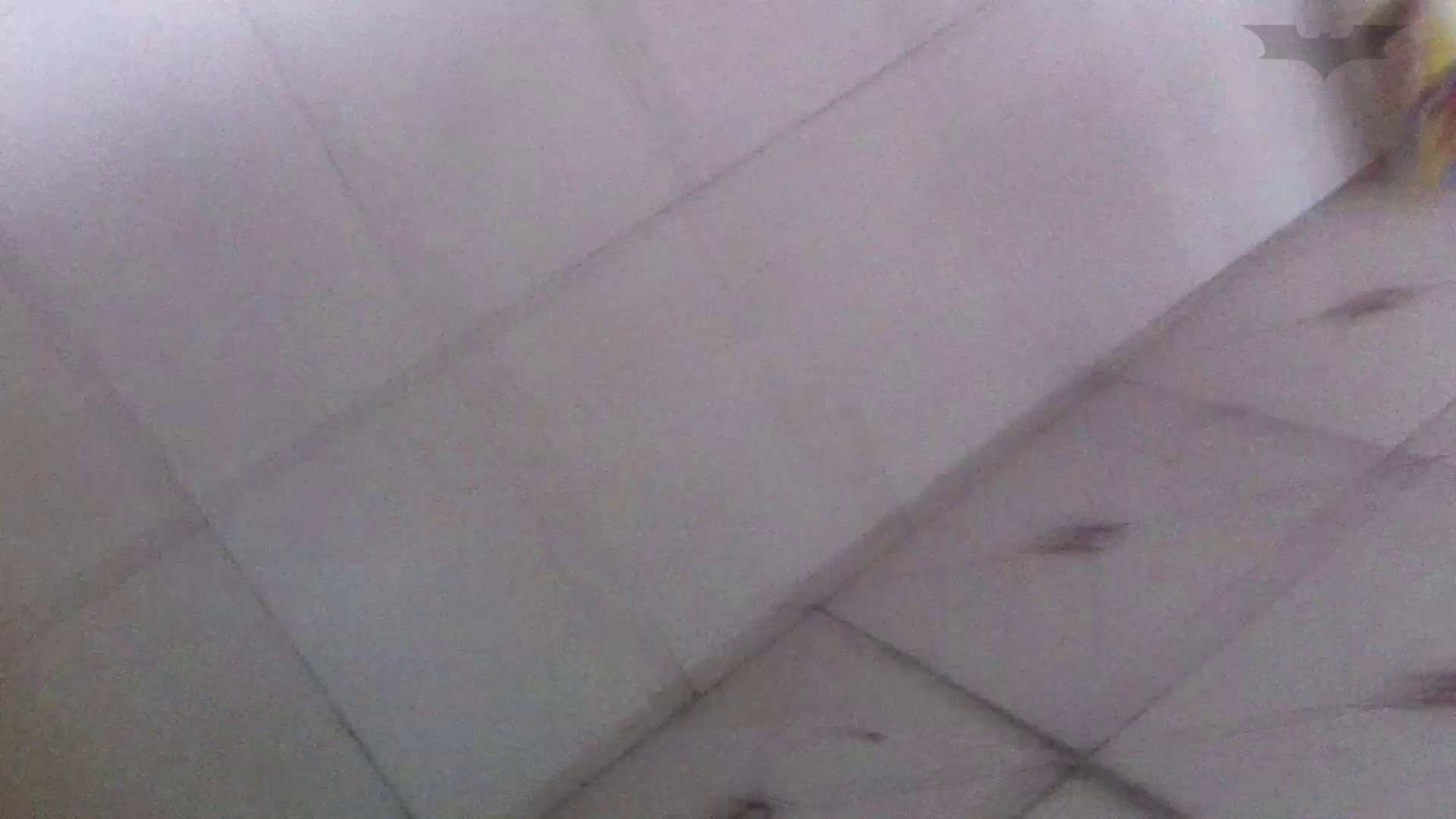 JD盗撮 美女の洗面所の秘密 Vol.67 丸見え セックス無修正動画無料 55画像 13
