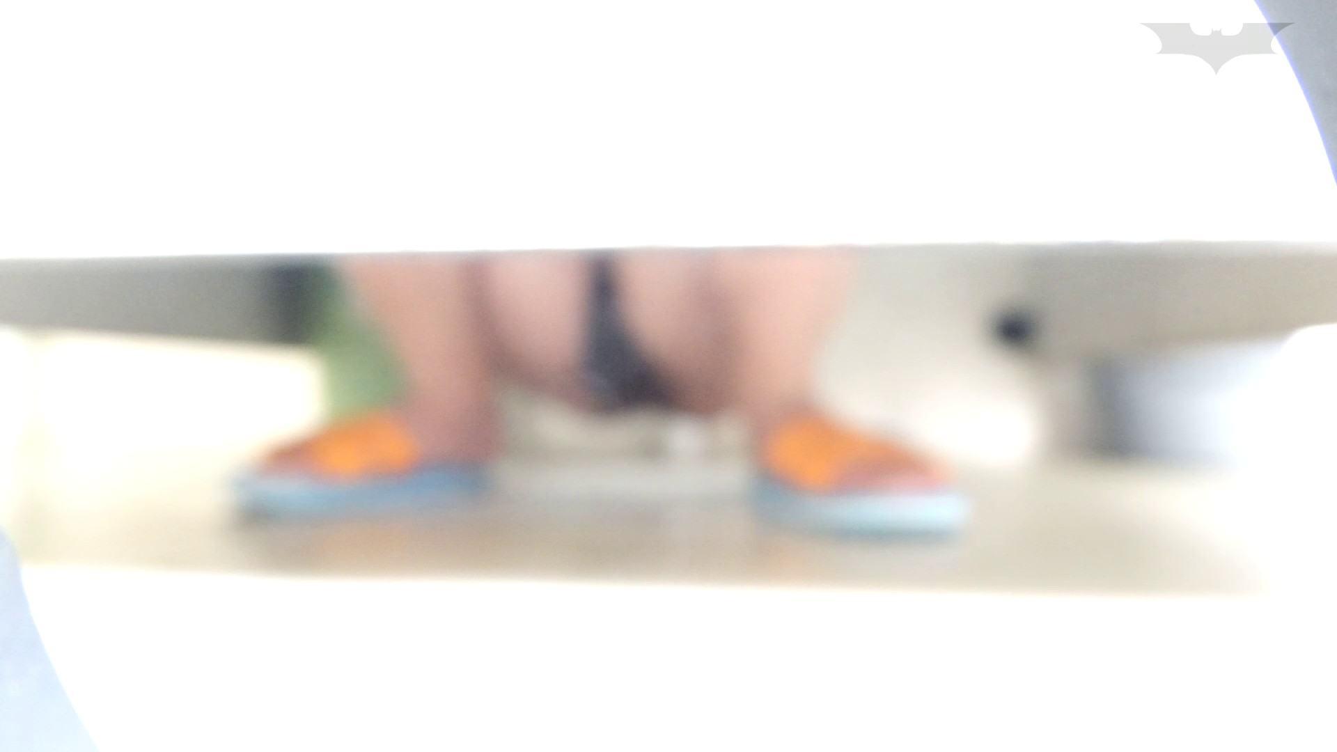 JD盗撮 美女の洗面所の秘密 Vol.67 美肌 ワレメ動画紹介 55画像 15