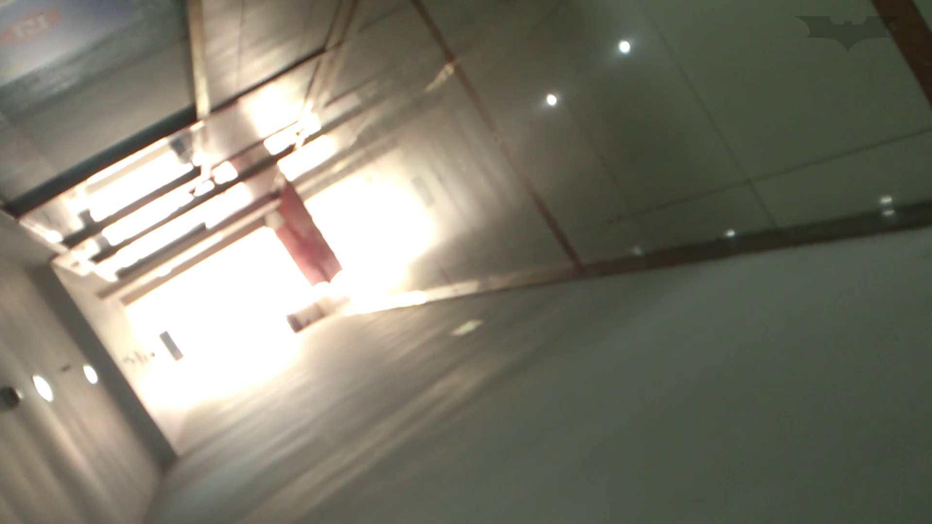 JD盗撮 美女の洗面所の秘密 Vol.67 トイレのぞき おまんこ無修正動画無料 55画像 19