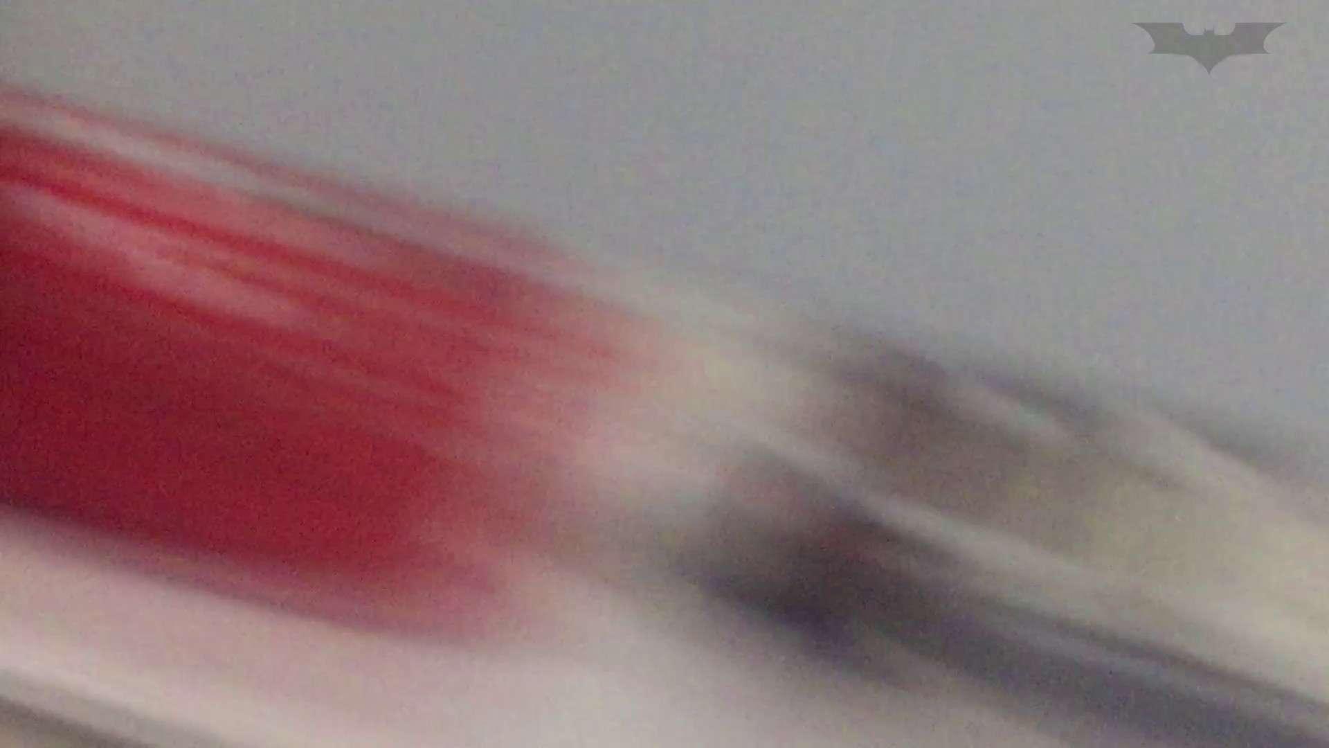 JD盗撮 美女の洗面所の秘密 Vol.70 盛合せ 性交動画流出 89画像 25