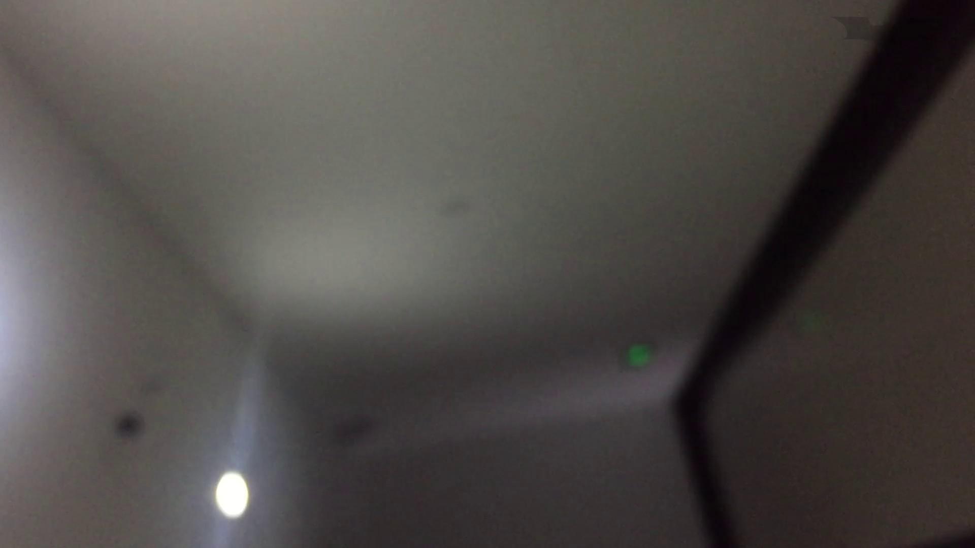 JD盗撮 美女の洗面所の秘密 Vol.70 盛合せ 性交動画流出 89画像 58