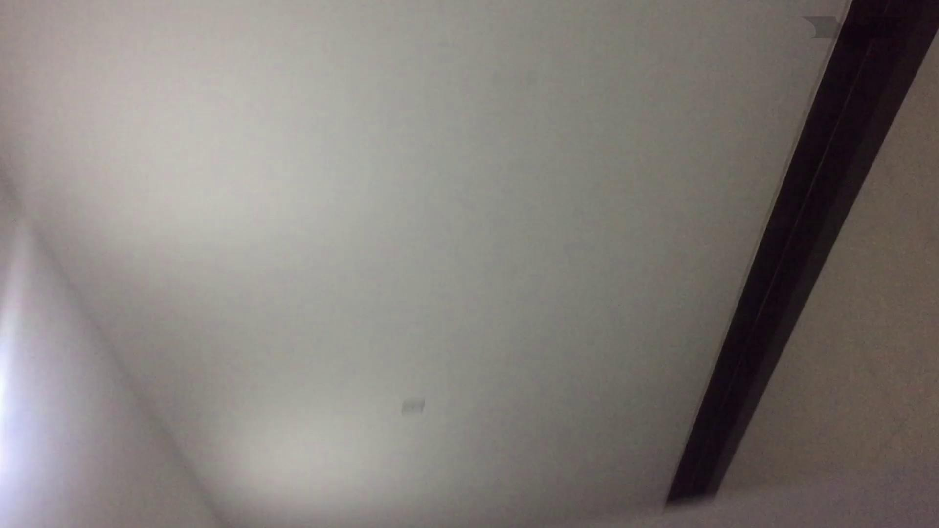JD盗撮 美女の洗面所の秘密 Vol.70 トイレのぞき 性交動画流出 89画像 76