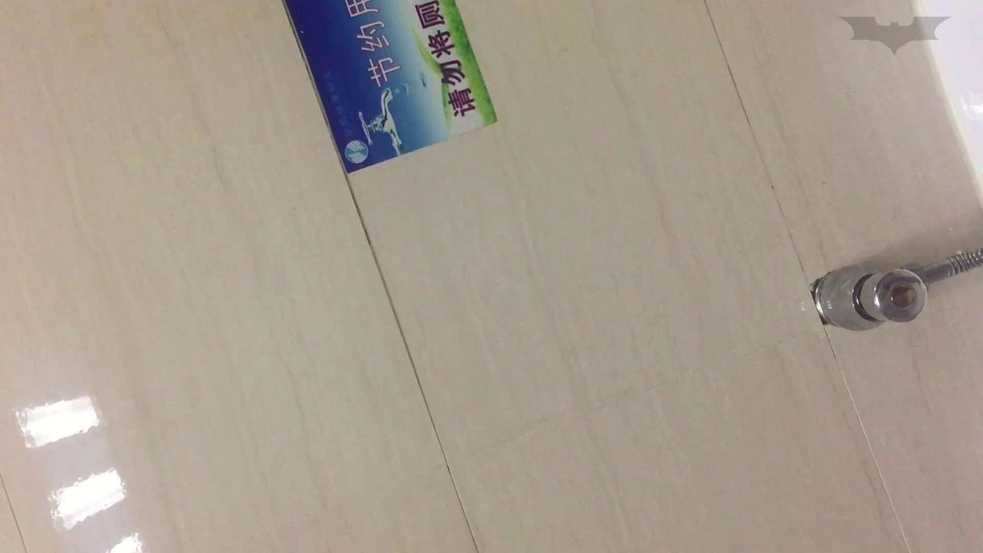 JD盗撮 美女の洗面所の秘密 Vol.72 細身女性 ぱこり動画紹介 74画像 50