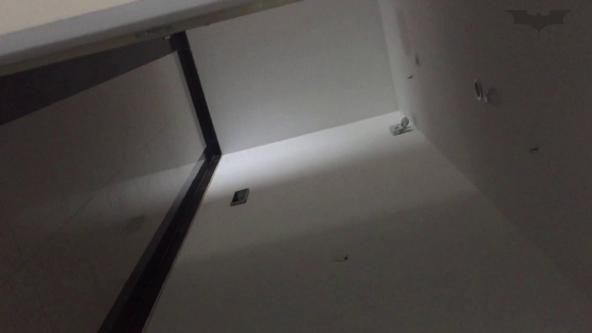 JD盗撮 美女の洗面所の秘密 Vol.73 トイレのぞき オメコ無修正動画無料 105画像 59