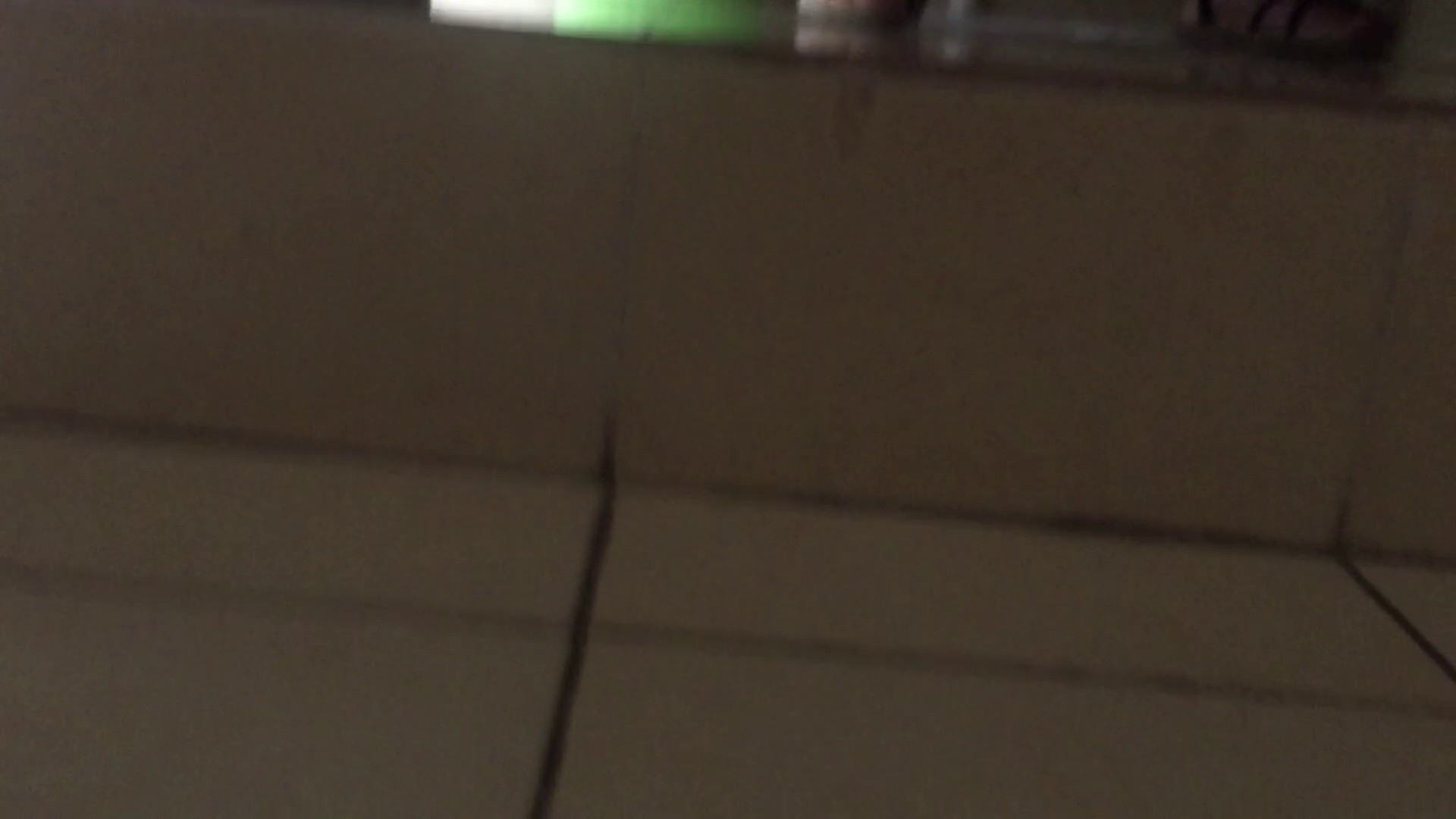 JD盗撮 美女の洗面所の秘密 Vol.73 美肌 おめこ無修正動画無料 105画像 74