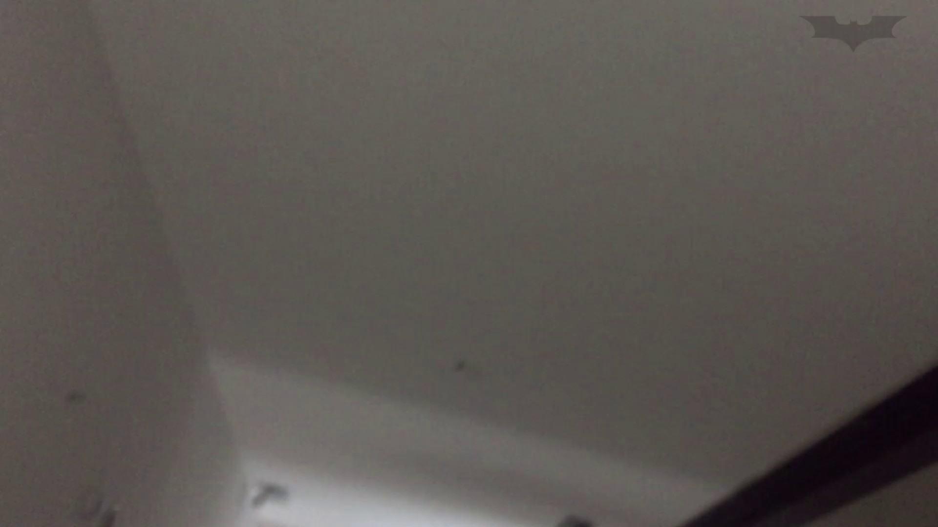 JD盗撮 美女の洗面所の秘密 Vol.74 細身女性 オマンコ動画キャプチャ 52画像 35