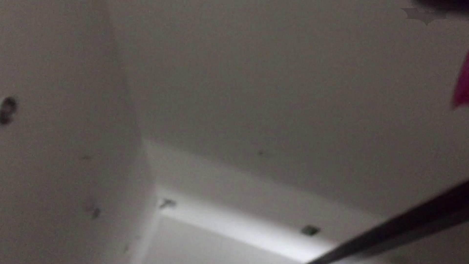JD盗撮 美女の洗面所の秘密 Vol.74 美女 ぱこり動画紹介 52画像 38