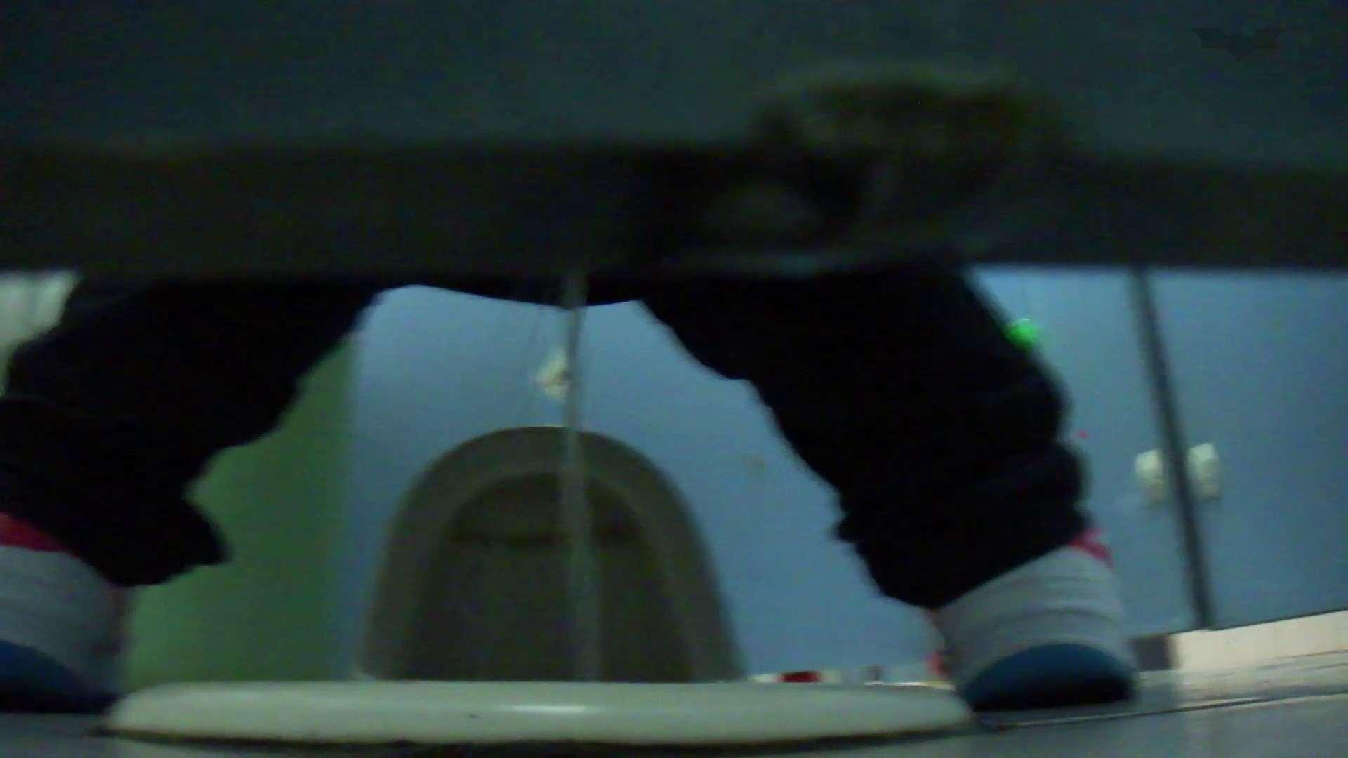 JD盗撮 美女の洗面所の秘密 Vol.76 美肌 オメコ無修正動画無料 99画像 15