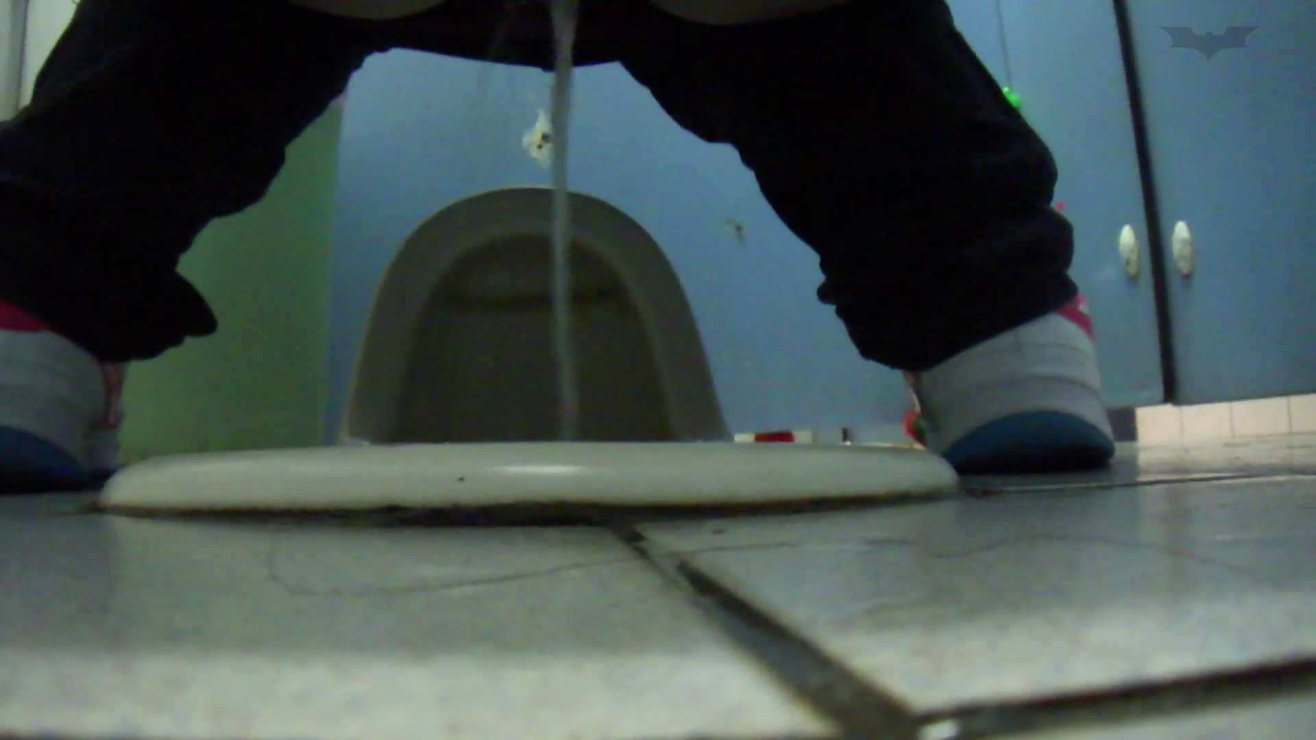 JD盗撮 美女の洗面所の秘密 Vol.76 細身女性 おめこ無修正動画無料 99画像 16